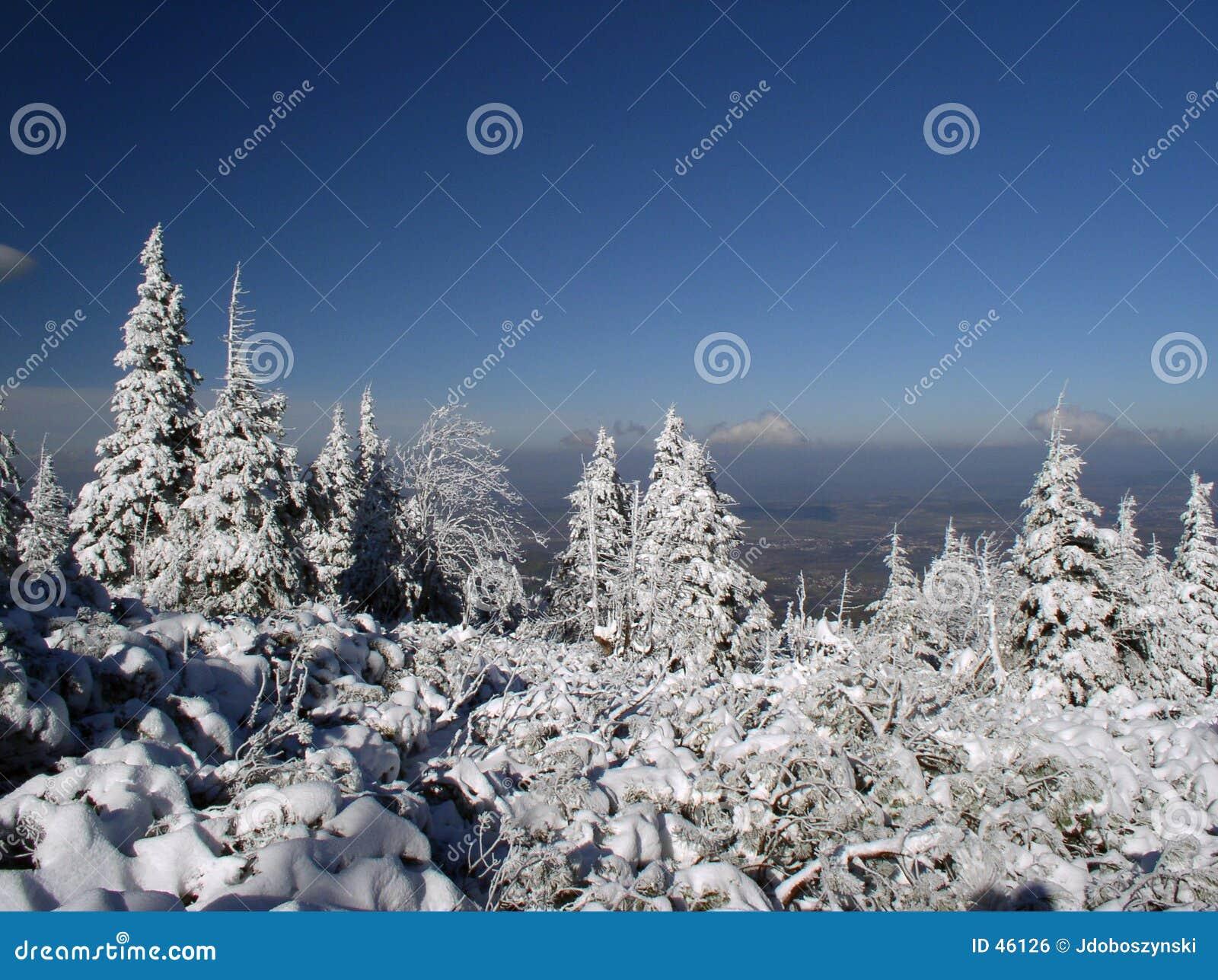 Invierno de la montaña