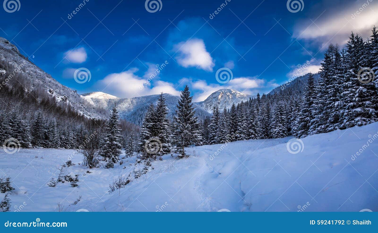 Download Invierno en el Tatras foto de archivo. Imagen de helada - 59241792