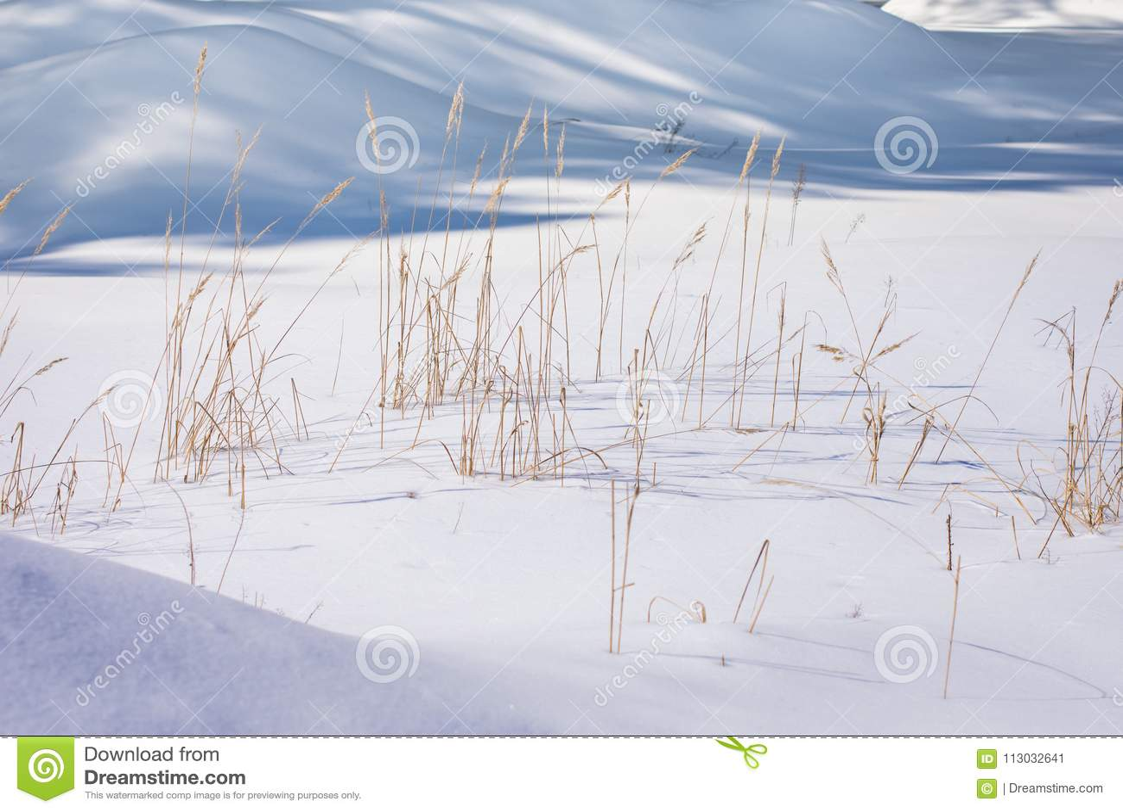 Invierno Nevado desviaciones Bastón congelado