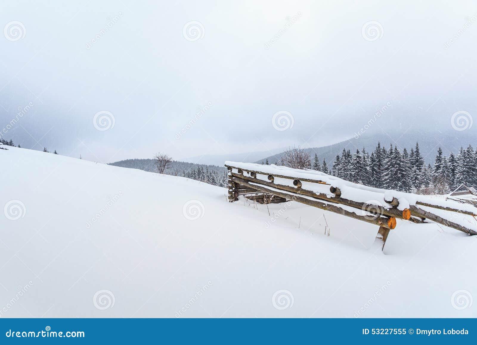 Invierno, prados, nieve, derivas