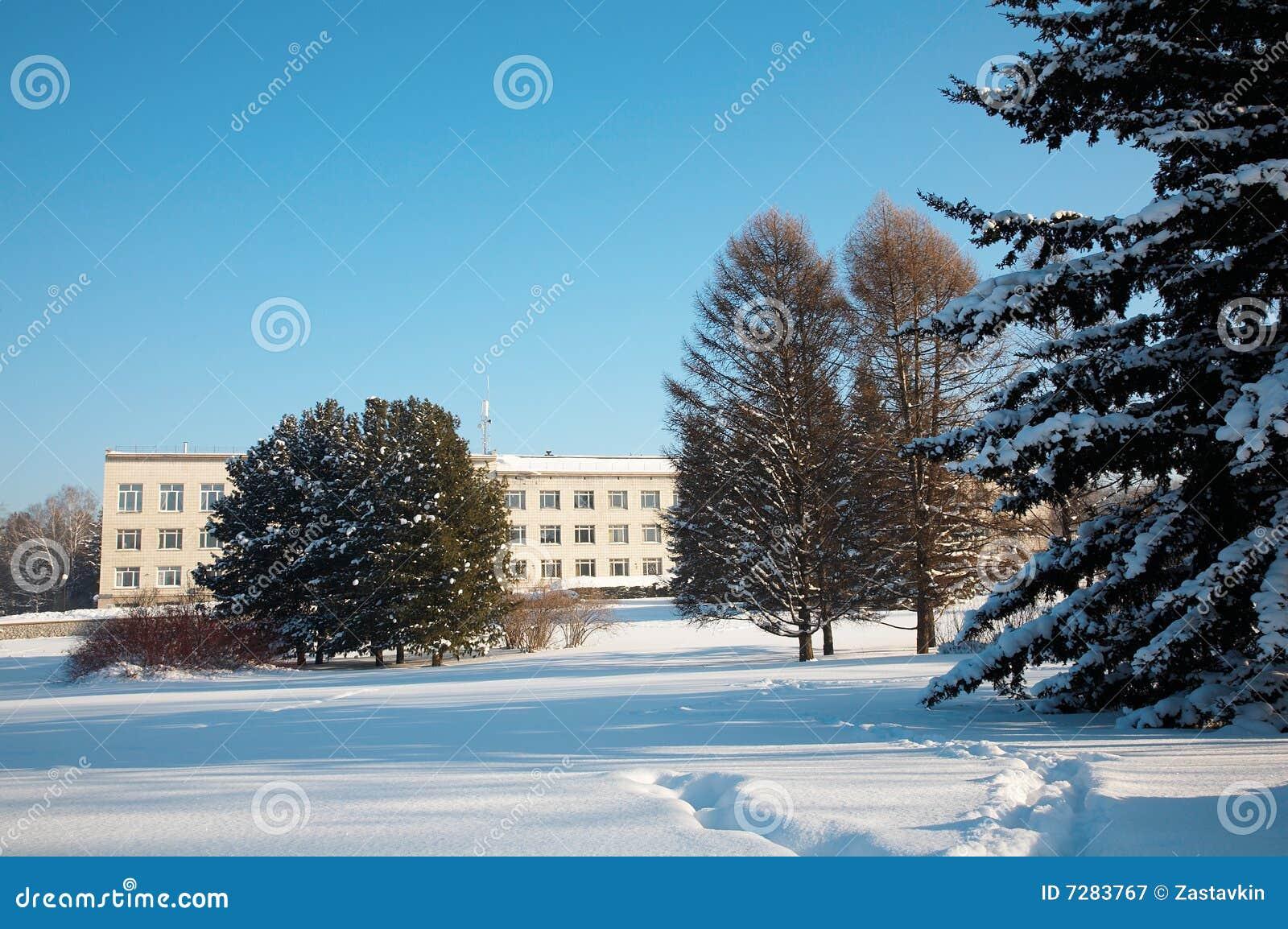 Invierno siberiano
