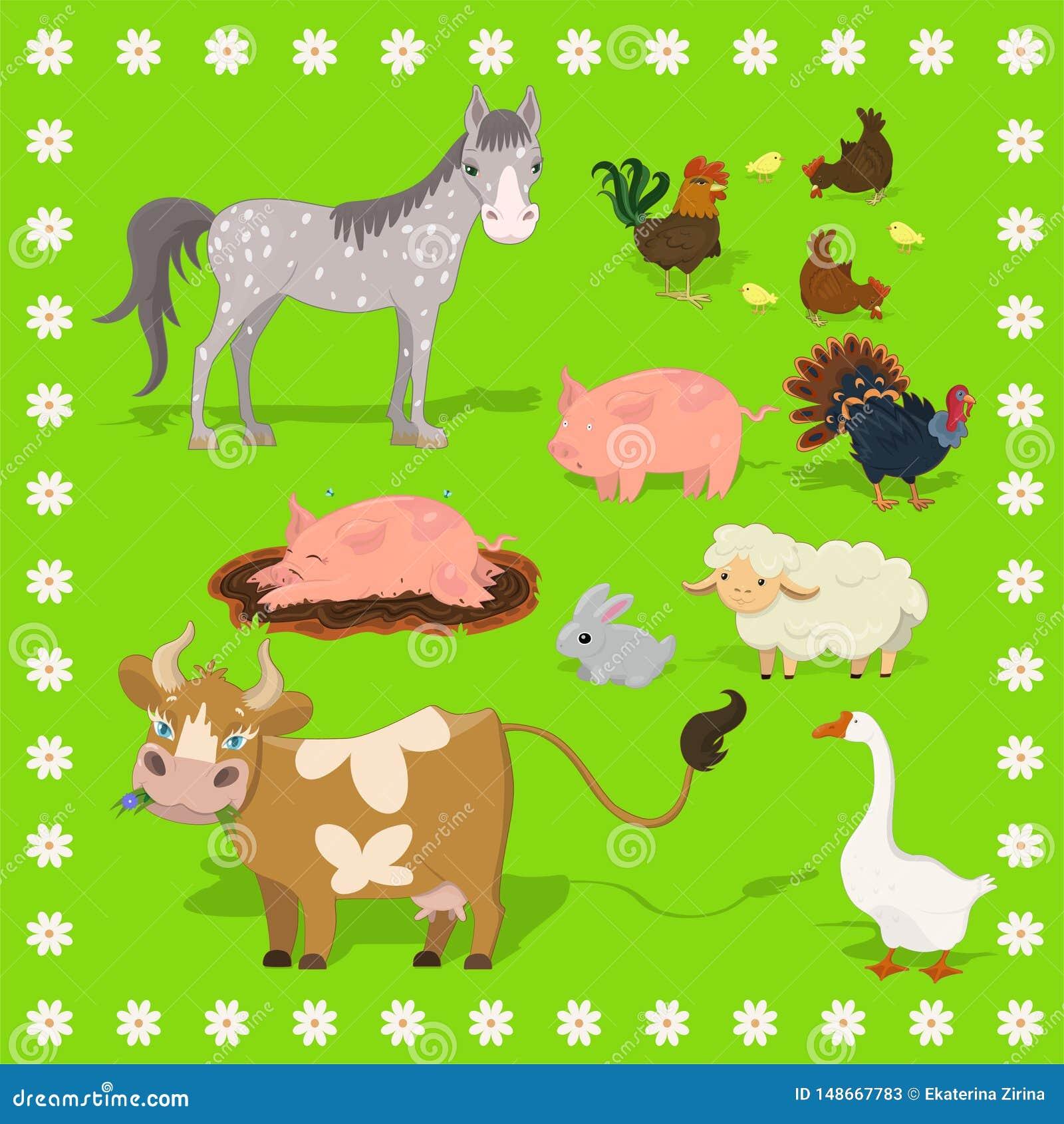Inzameling van de schapen van landbouwbedrijfdieren, konijn, koe, varken, haan, kip, Turkije, paard Frame van bloemen Vectorreeks