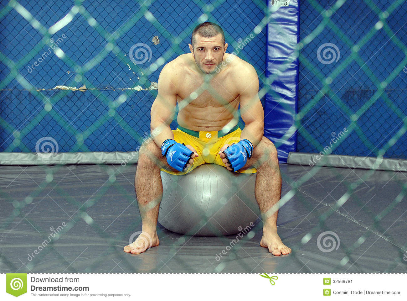 ... Related: Mma Cage Background , Mma Clipart , Mma Cage Fence