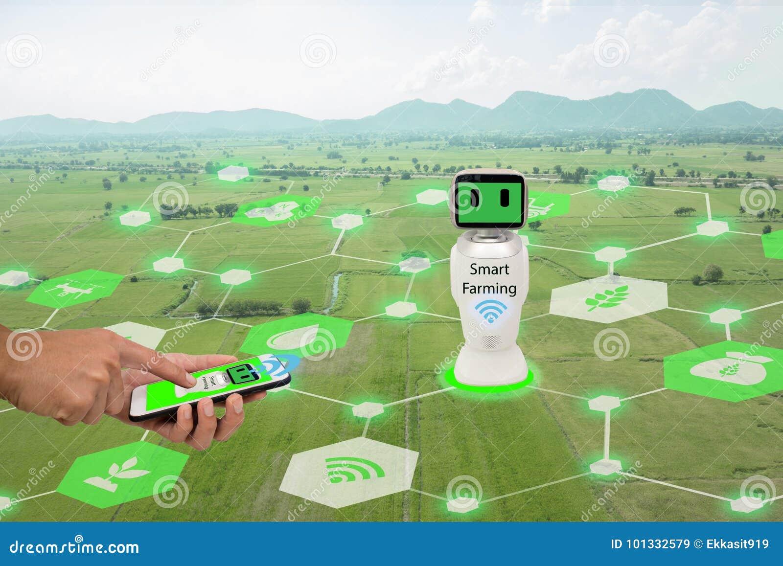 Iot,事互联网,农业概念 农夫用途手机连接聪明的机器人人工智能,人的ai用途