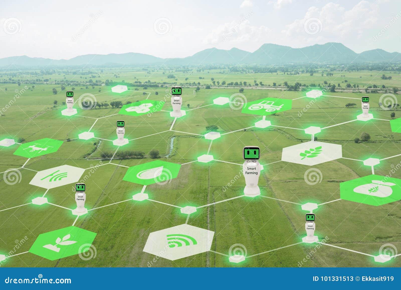 Iot, Internet de cosas, concepto de la agricultura, uso robótico elegante del ai de la inteligencia artificial para la gestión, c