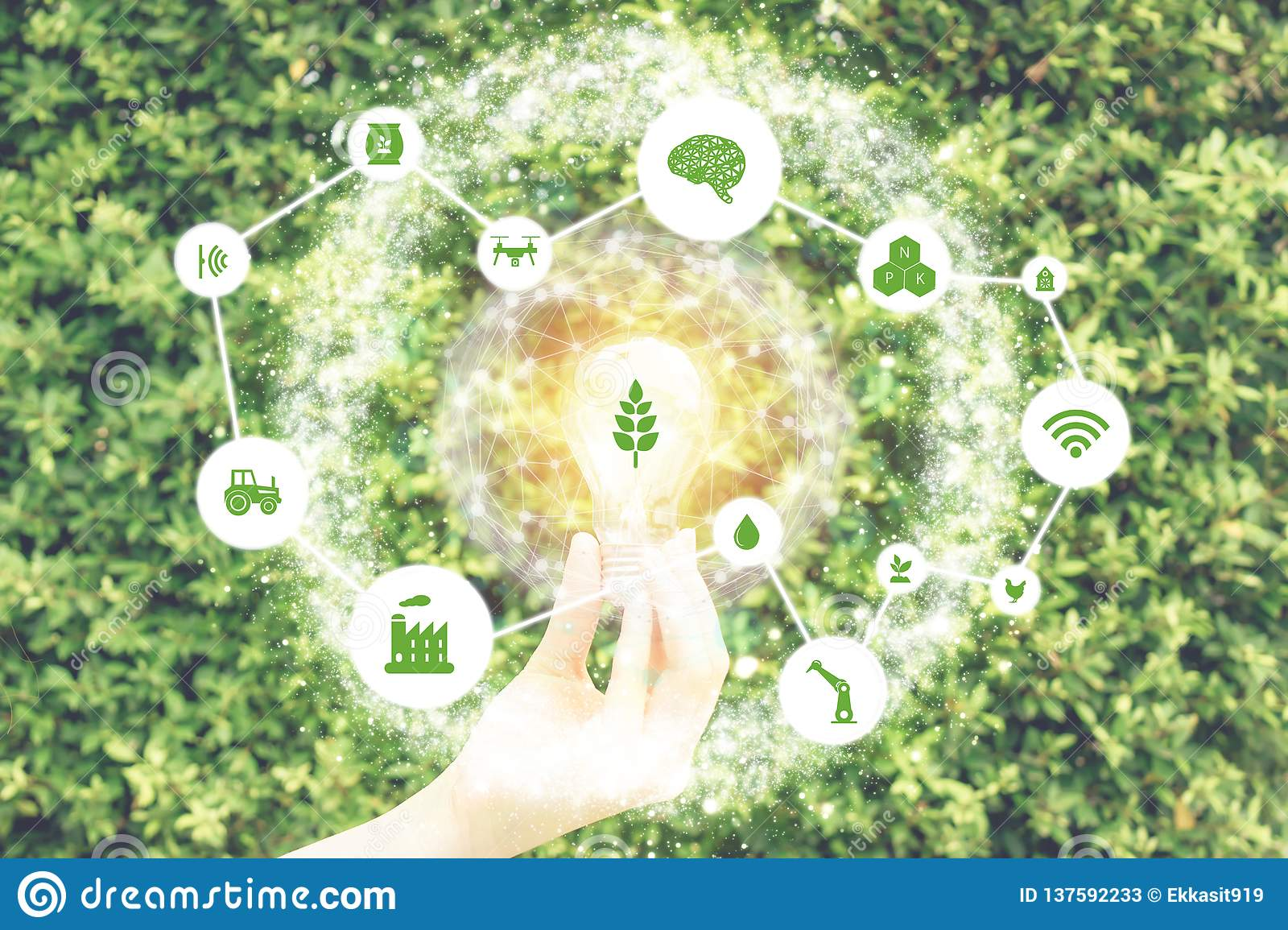 Iot, internet of things,farmer agriculture concept, Smart farm with Robotic icon artificial intelligence/ ai use for management