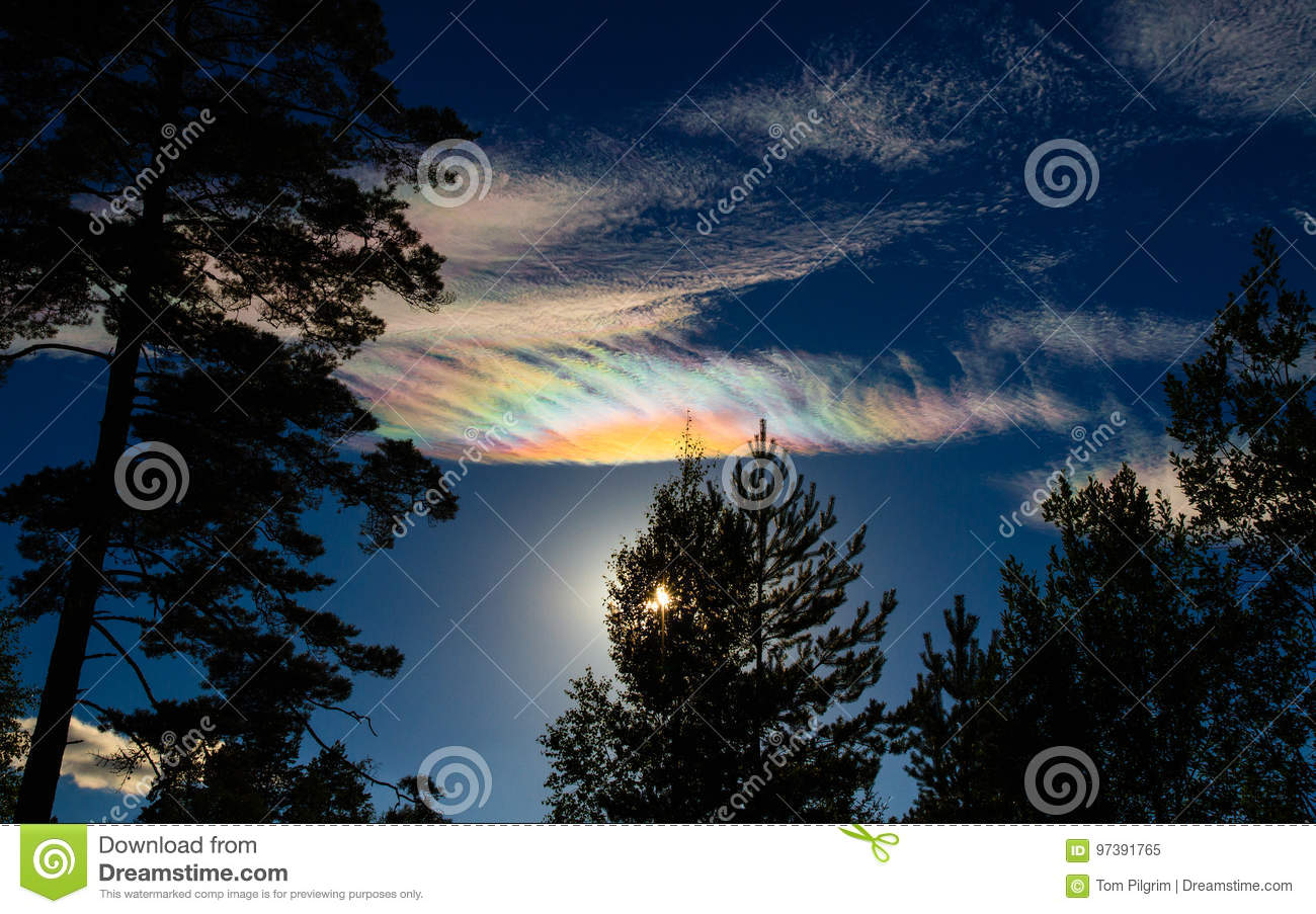 Iridescent clouds (Nacreous Clouds) over silhouetted trees