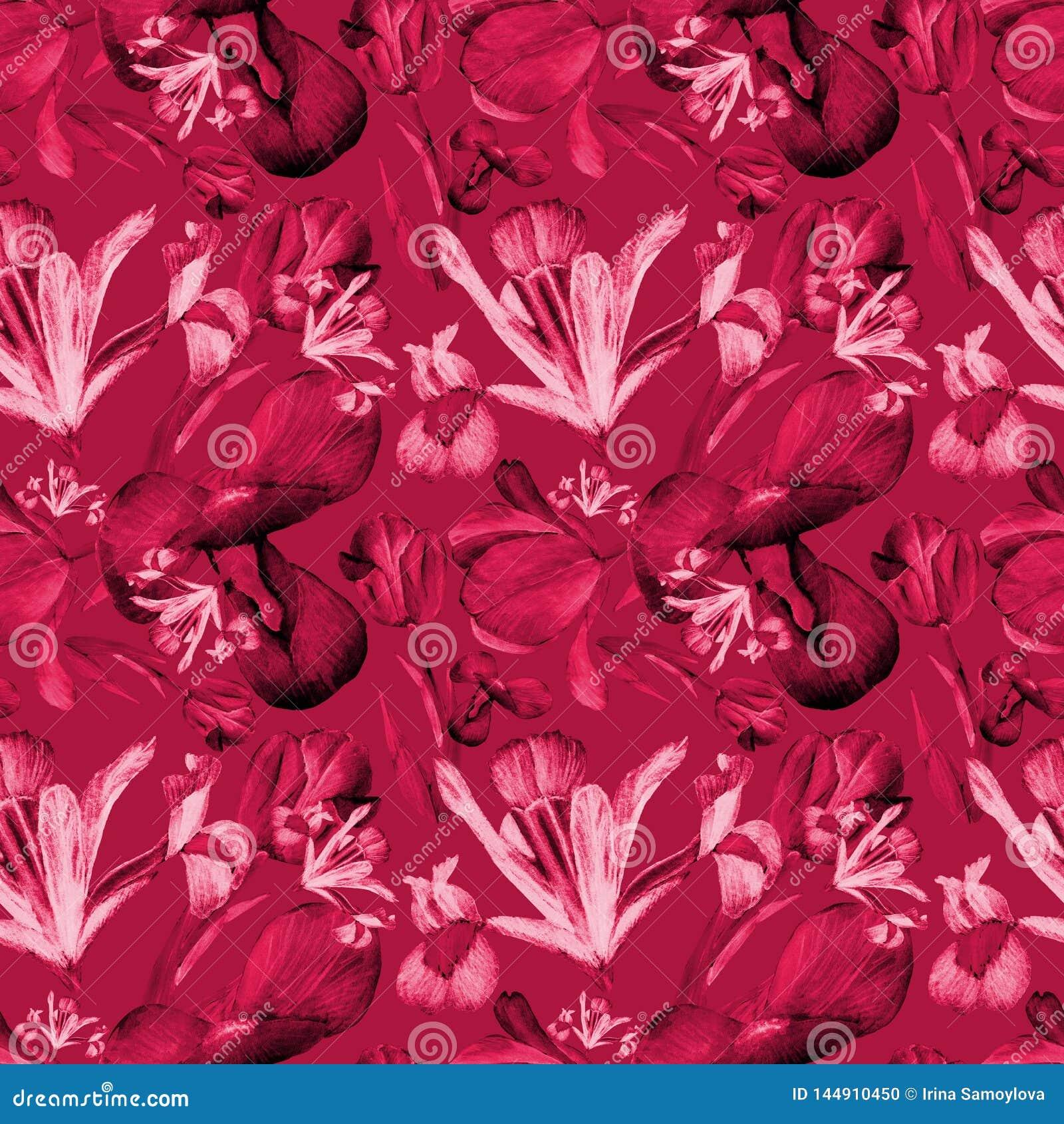 Iris d aquarelle et rouge sans couture de modèle de tulipes