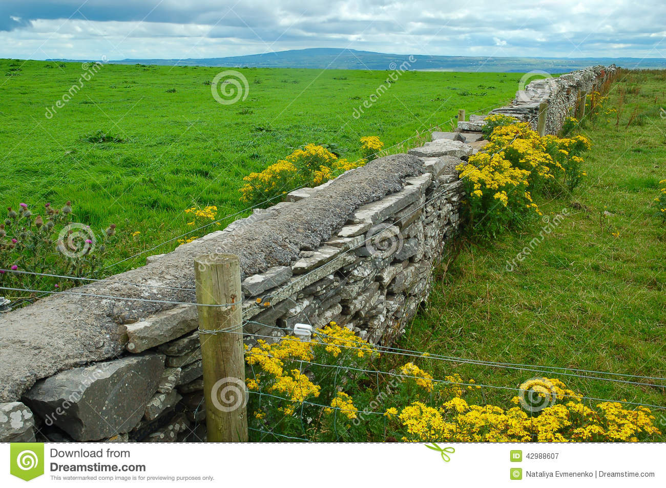 Irish fields stock photo image 42988607 for Garden design jobs ireland