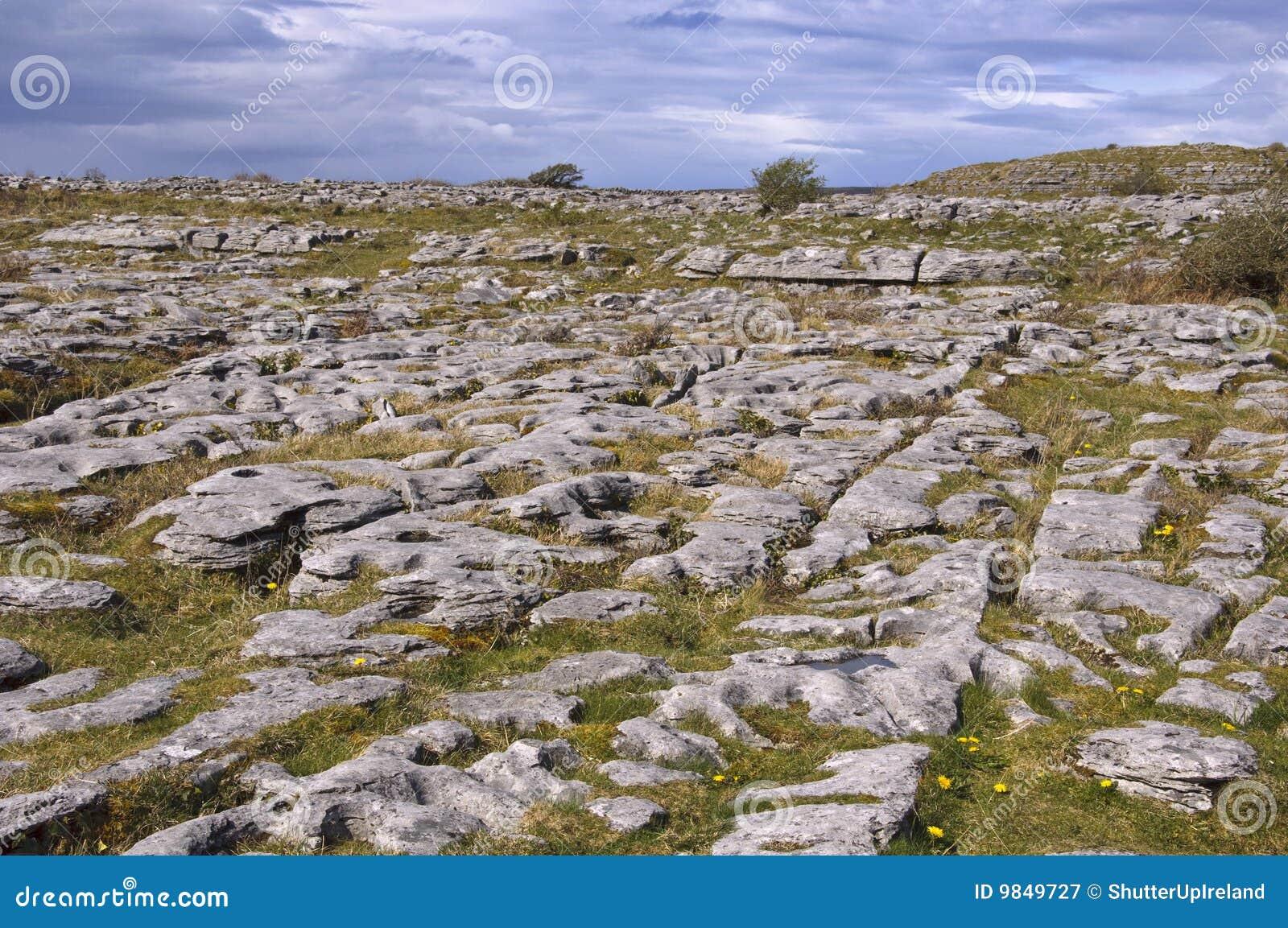 Irish limestone landscape royalty free stock photography for Limestone landscape rock