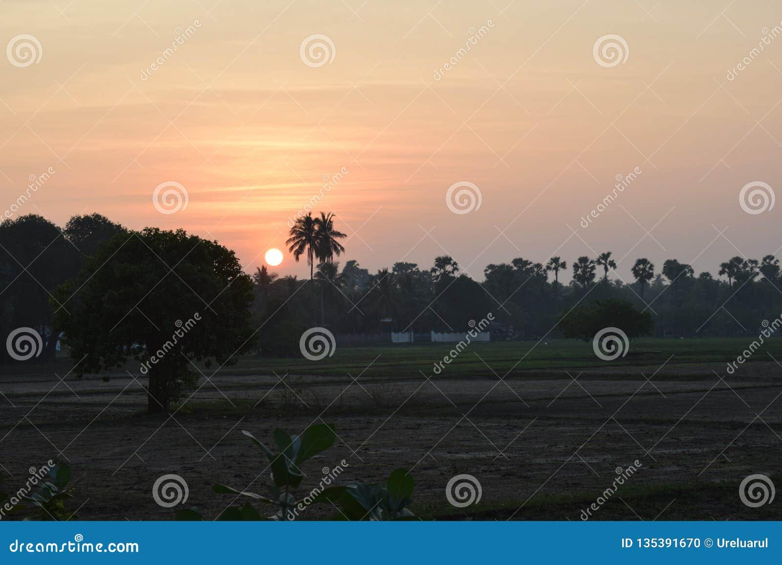 Irländare som sparas med solnedgång i by