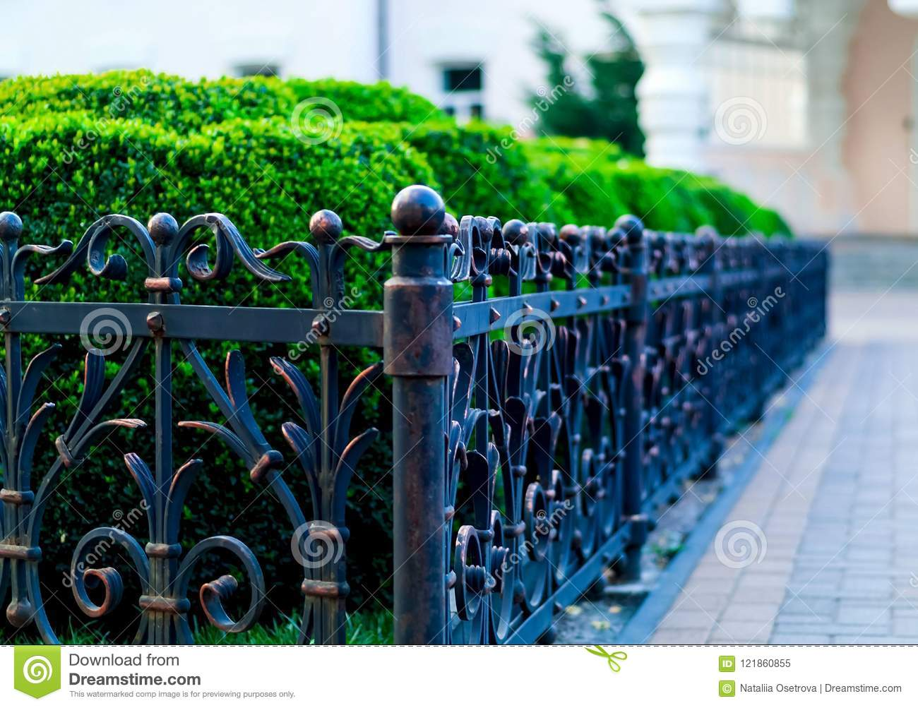 Iron forged fence, wrought iron ornaments,horizontal photo,natural light, space for copy