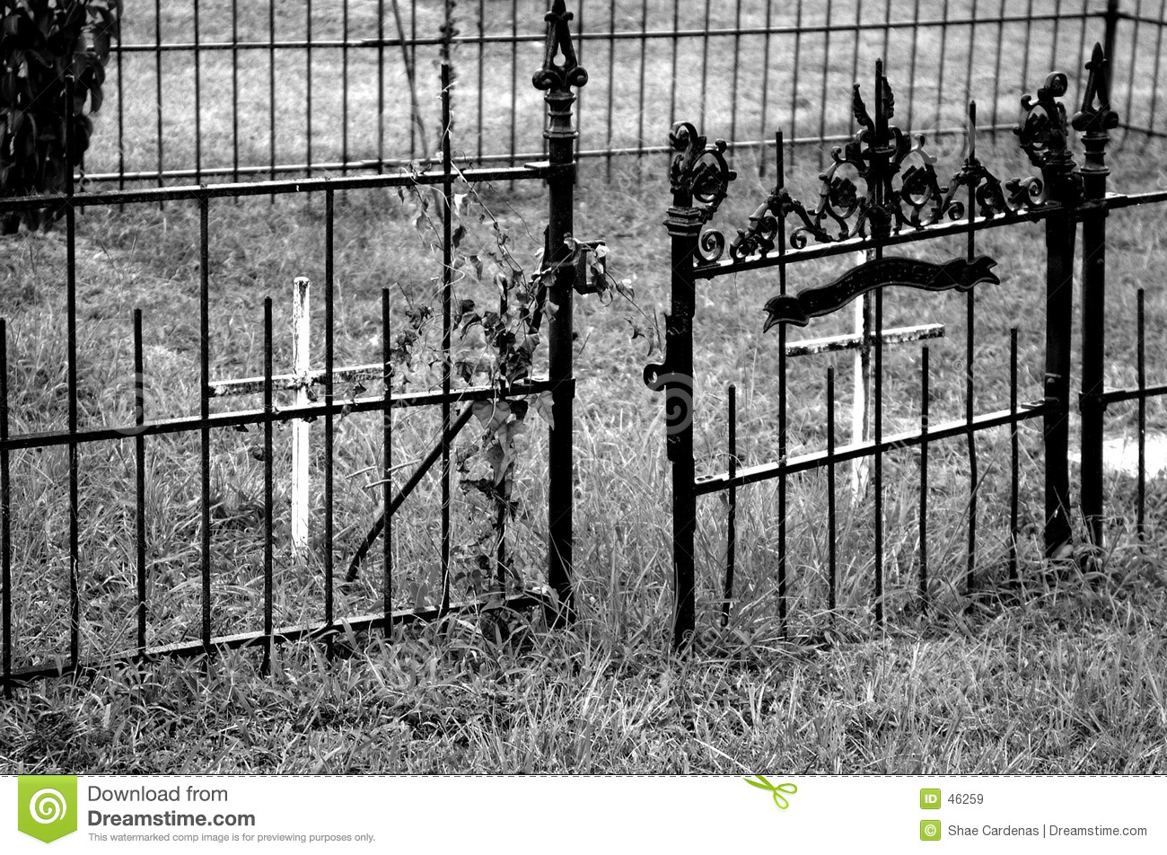 Download Iron Gate stock image. Image of gate, white, cross, open - 46259