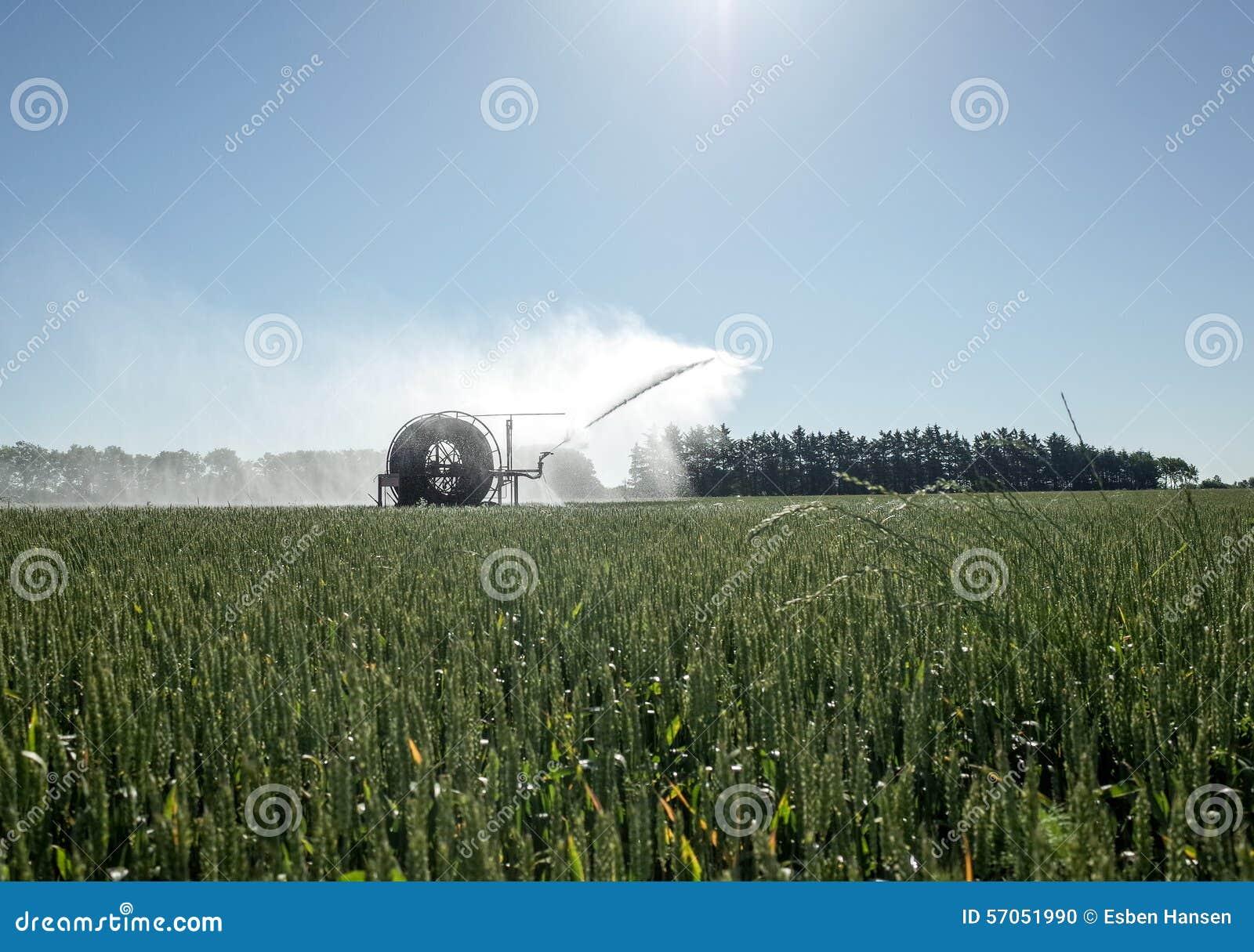 Irrigatiespil die de Gebieden water geven