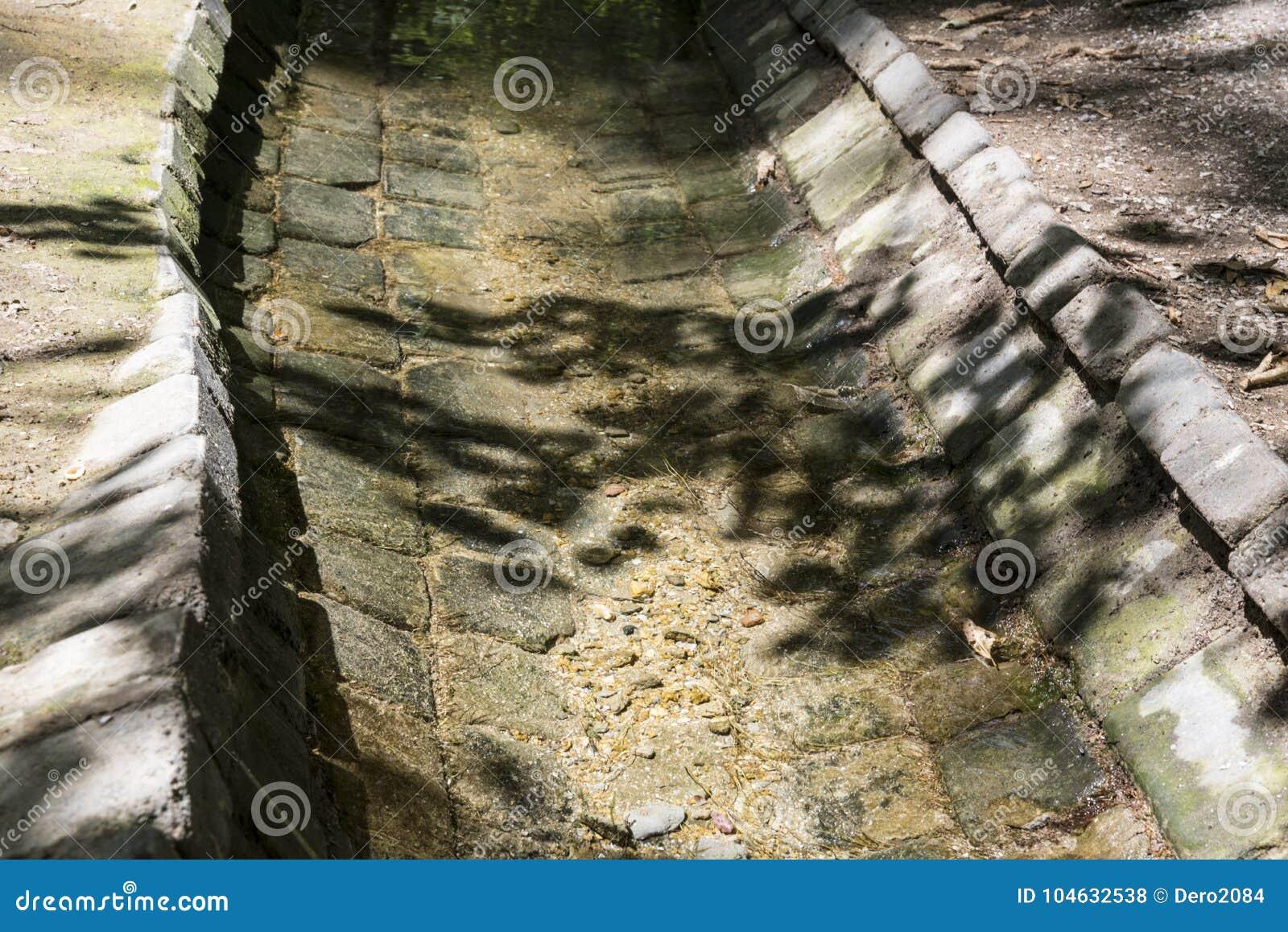 Download Irrigatiesysteem Voor Bomen En Installaties In De Nationale Reserve Askania-Nova, De Oekraïne Stock Foto - Afbeelding bestaande uit toerisme, open: 104632538