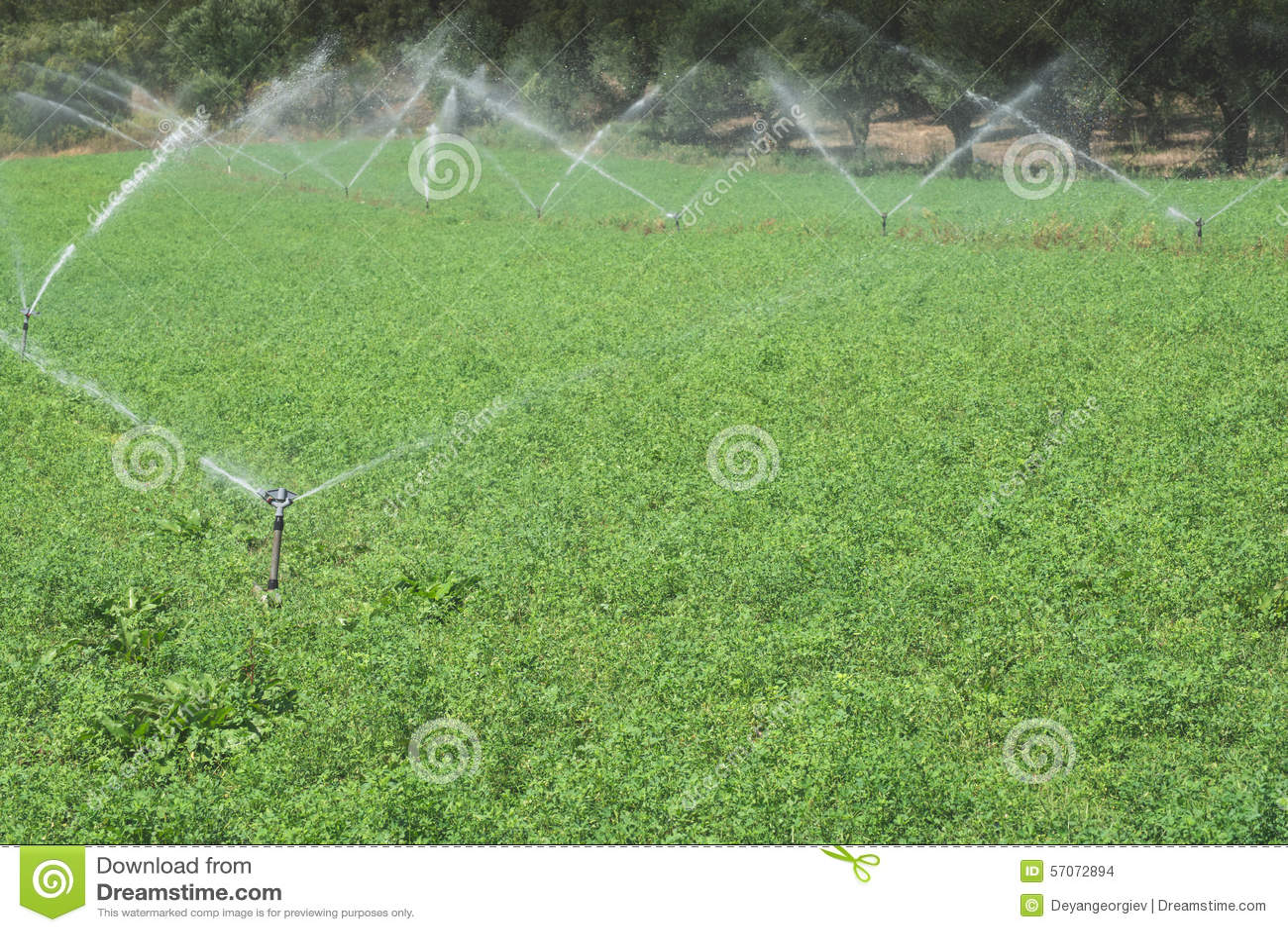 Irrigatiesystemen