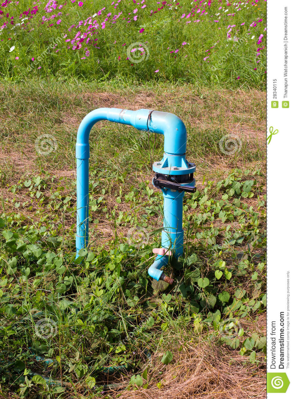 How to Use Pressure and Flow Switches with Irrigation ...