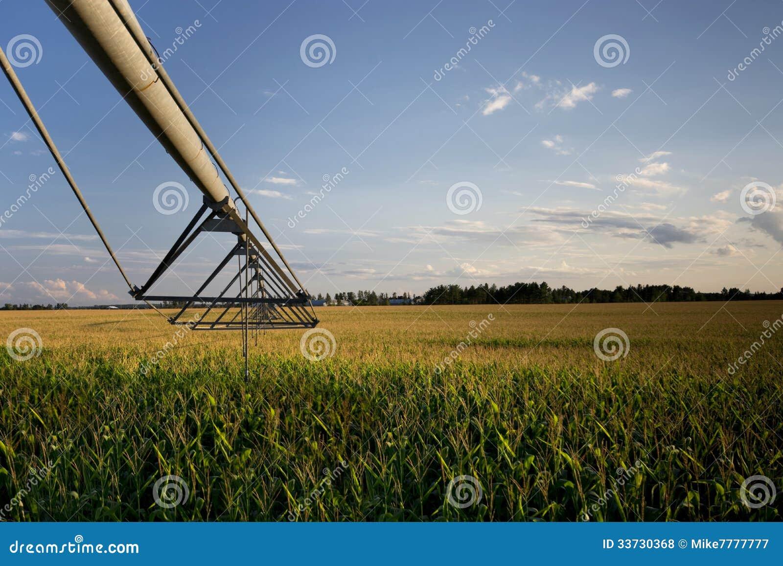 Irrigator над кукурузным полем, Midwest, США