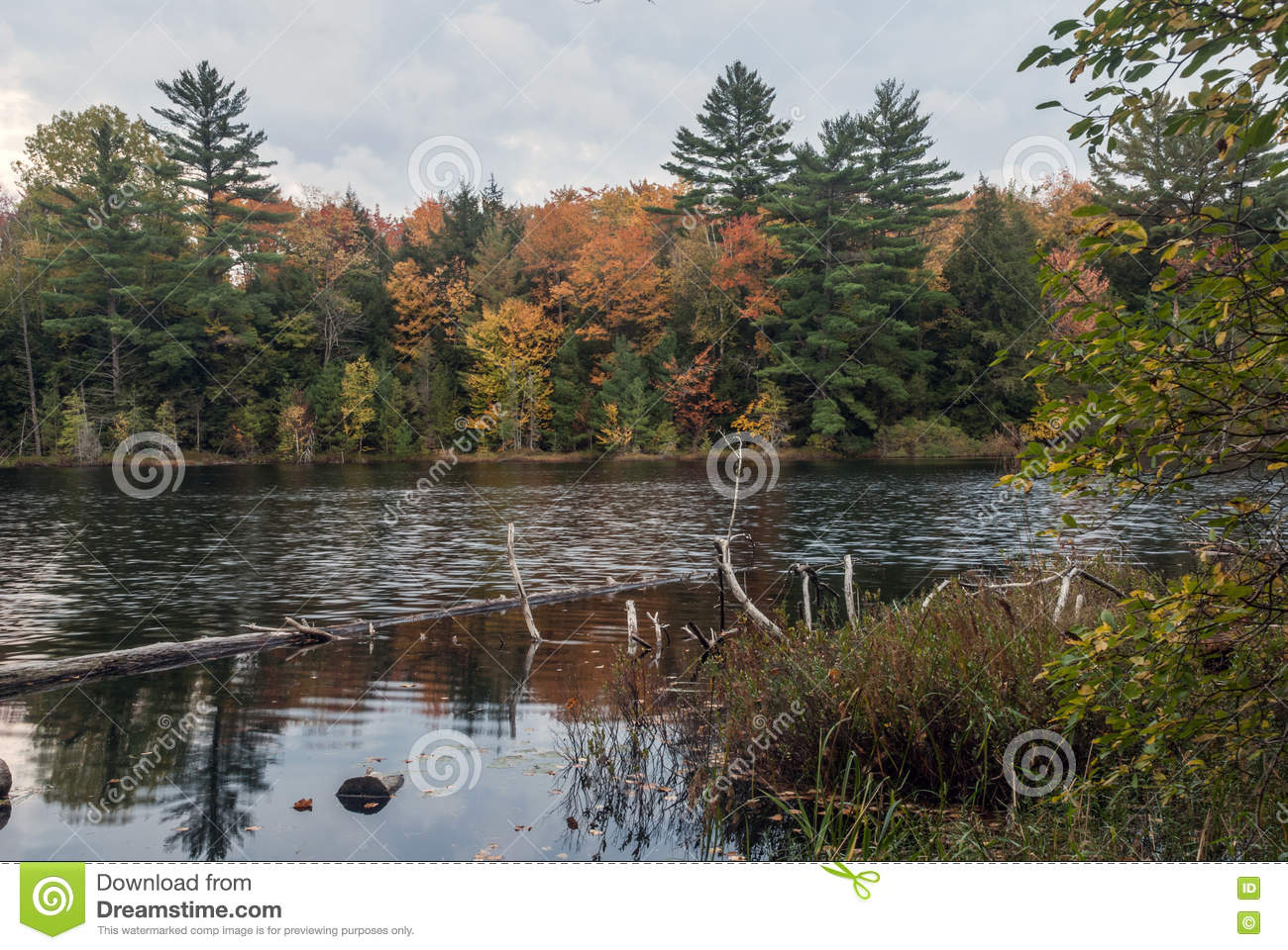 Irwin Lake, het Nationale Bos van Hiawatha, Michigan, de V.S.