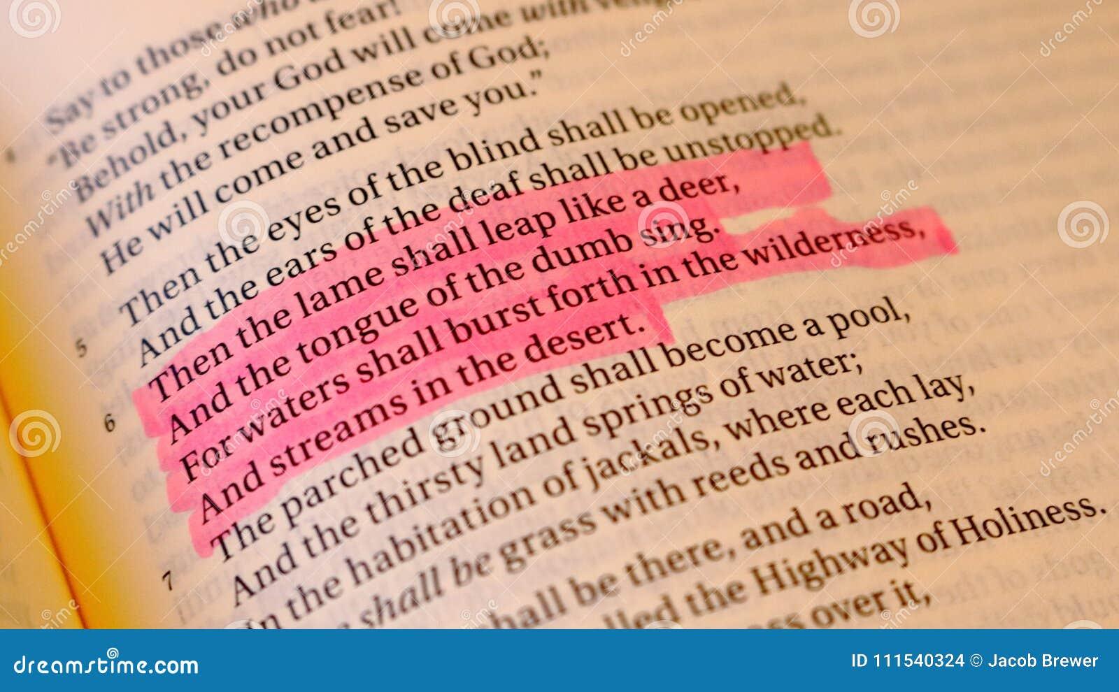 Isaiah 35:6 Bible Verse editorial stock image  Image of pink - 111540324