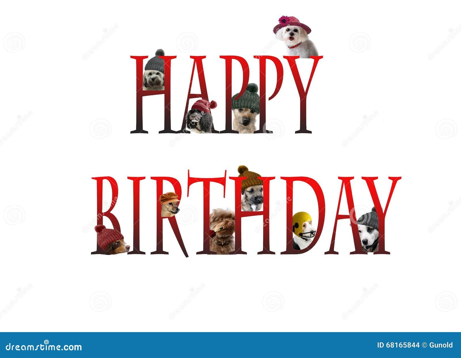 Iscrizione Di Buon Compleanno Con I Cani Fotografia Stock Immagine