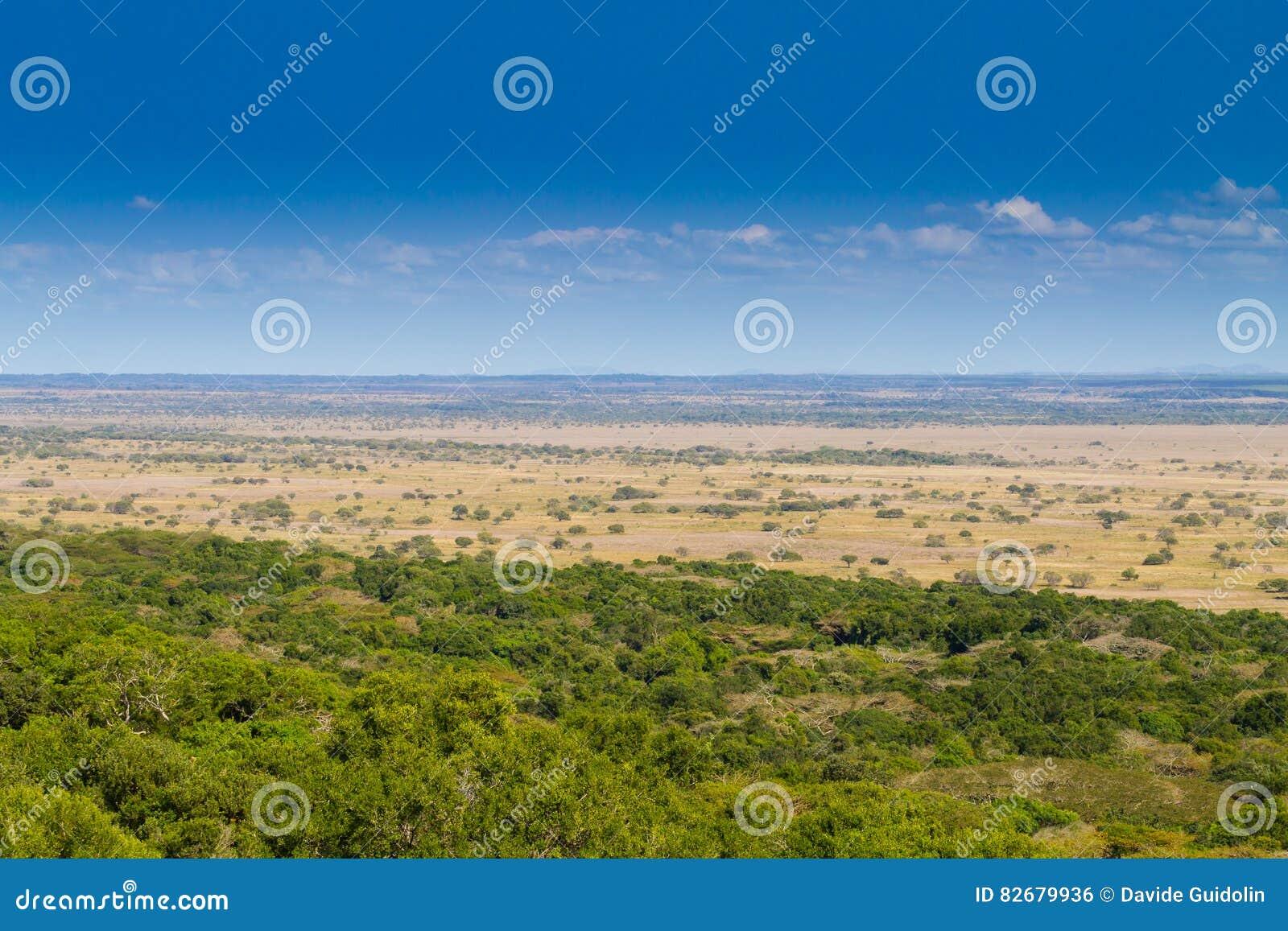 Isimangaliso-Sumpfgebiet-Parklandschaft