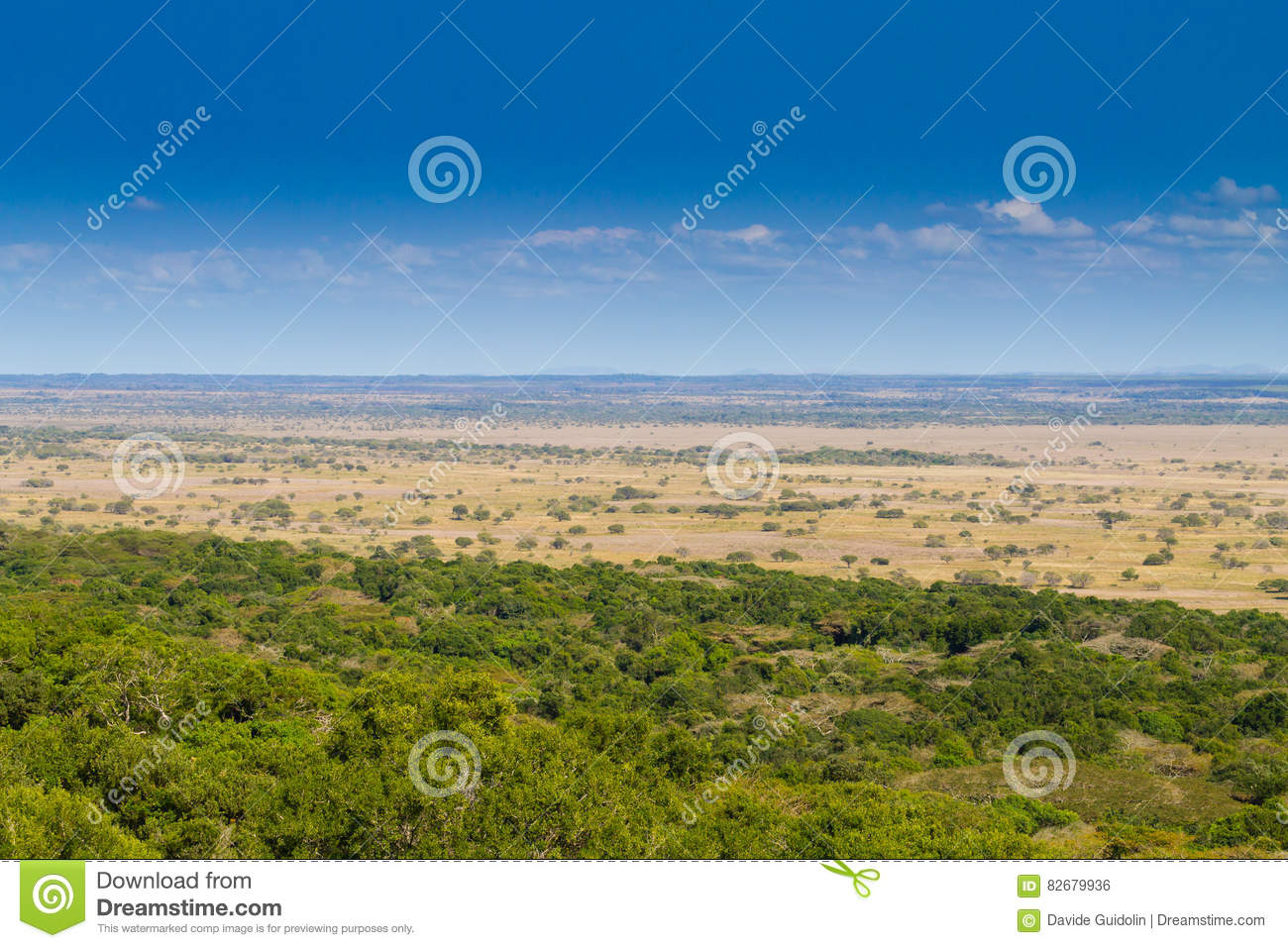 isimangaliso wetland park landscape stock photo image