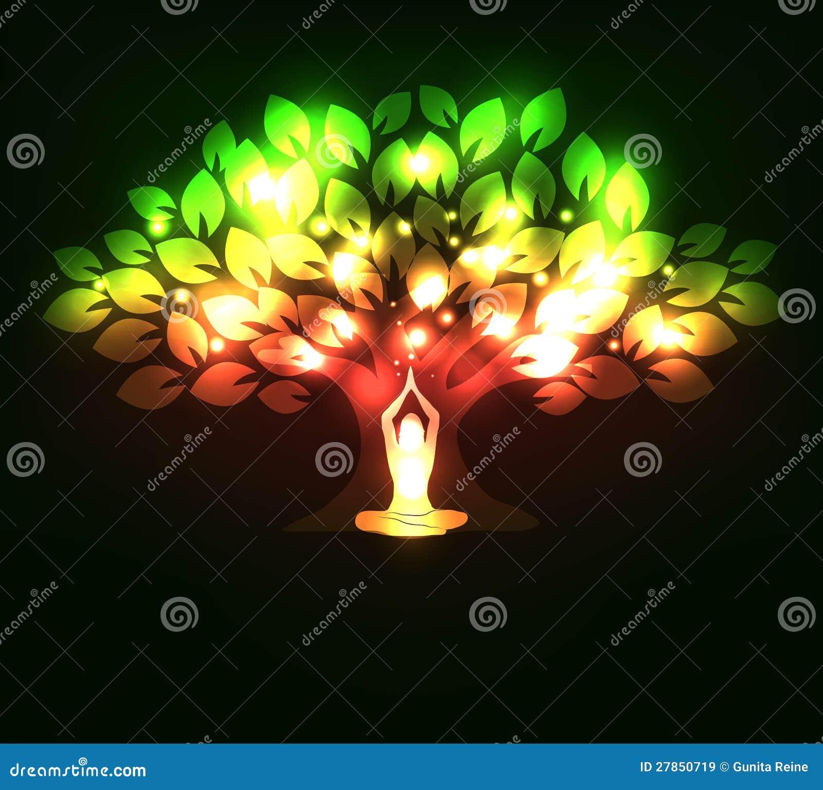 Iskrzasty drzewo i kobieta w joga pozie
