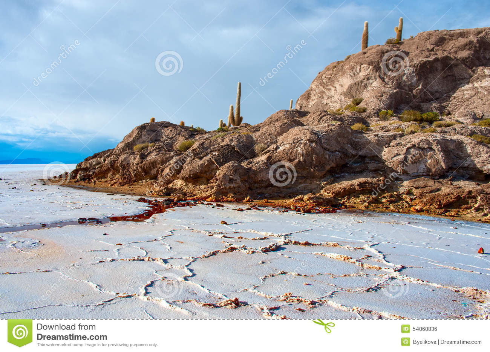 Isla de Incahuasi en Salar de Uyuni bolivia