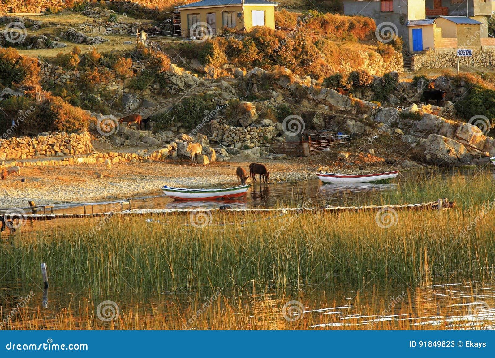 Isla del Sol в Боливии Южной Америке