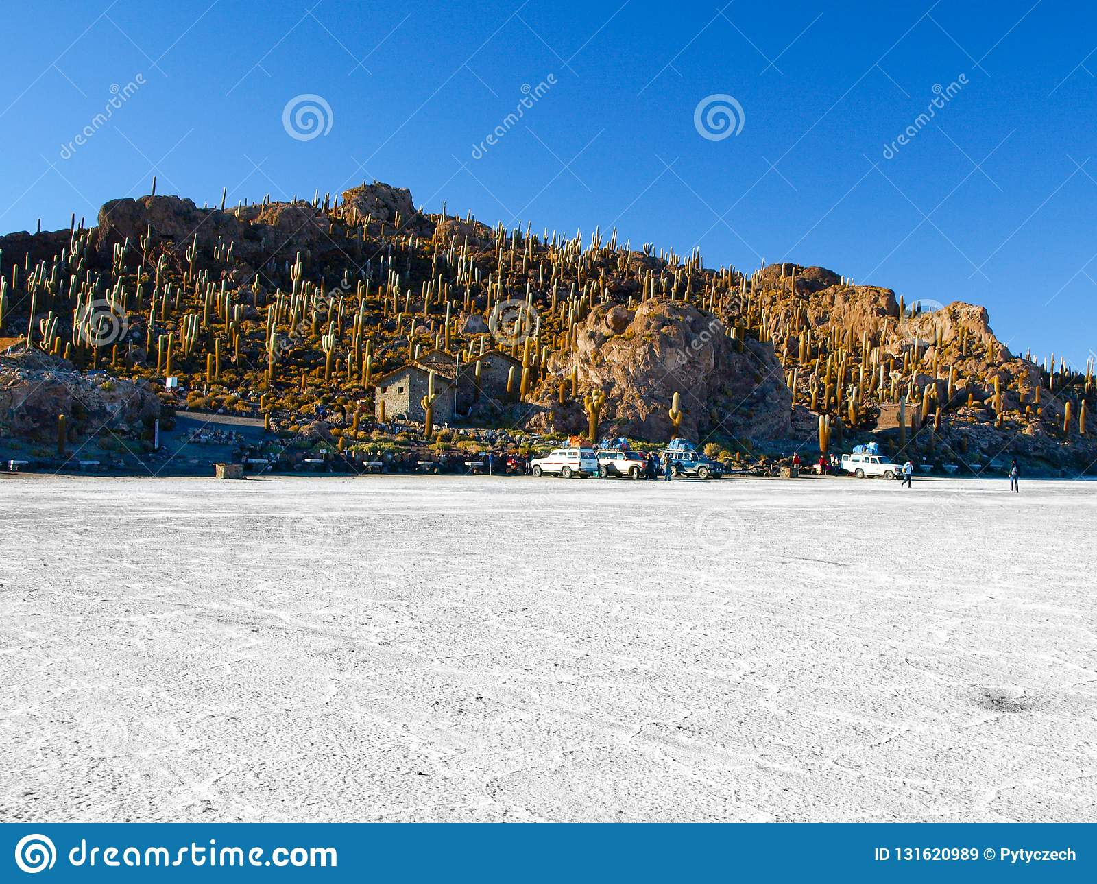 Isla Incahuasi oder Isla de Los Pescadores ist eine Insel mitten in Salar de Uyuni in Bolivien
