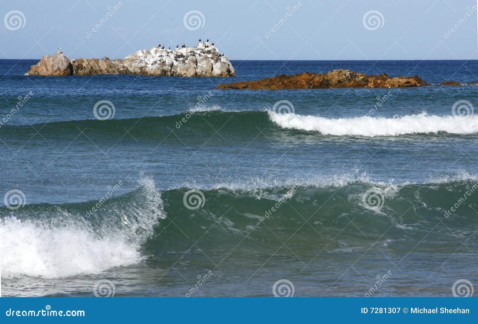 Isla y ondas de pájaro