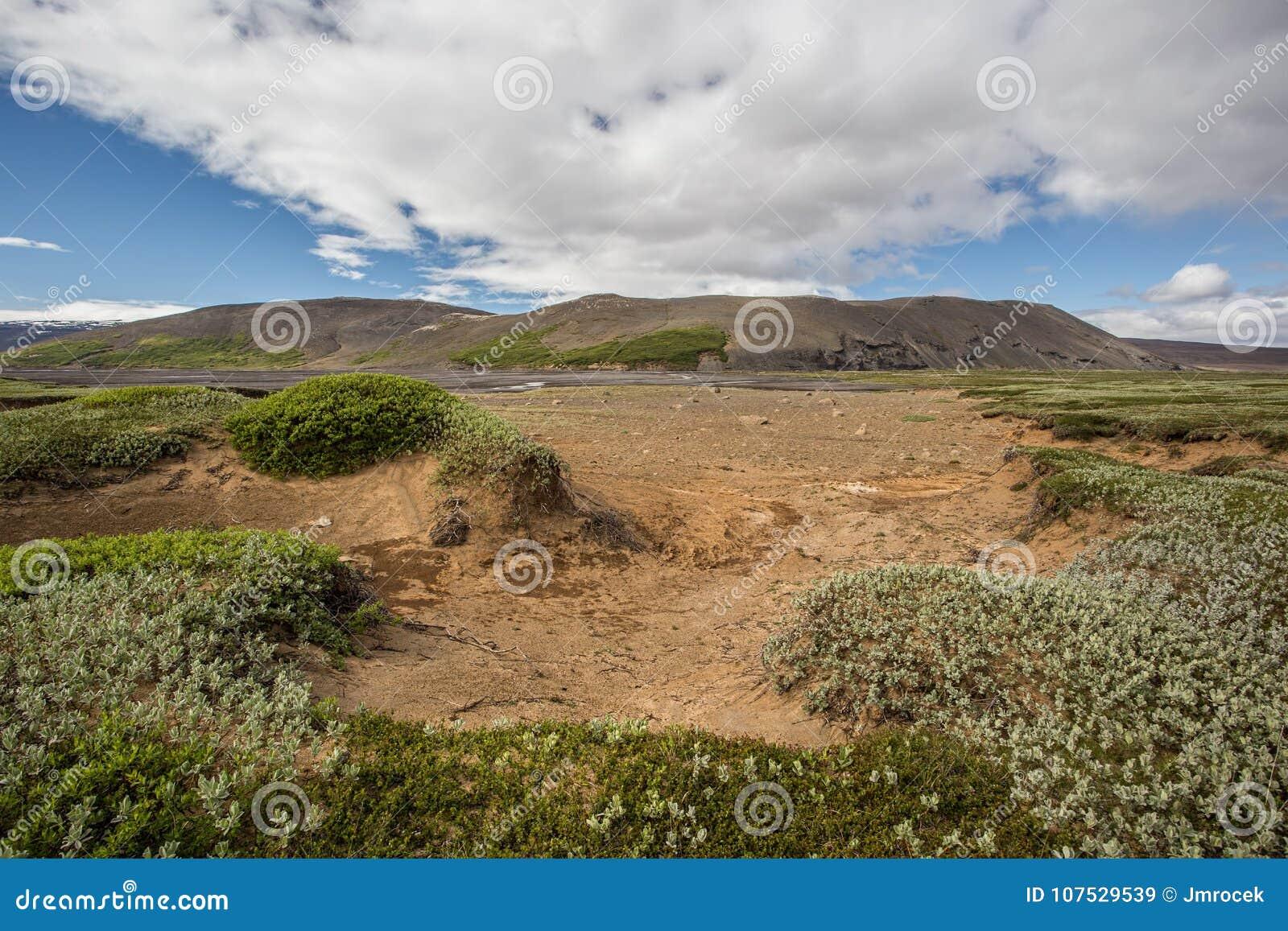 Island naturlandskap