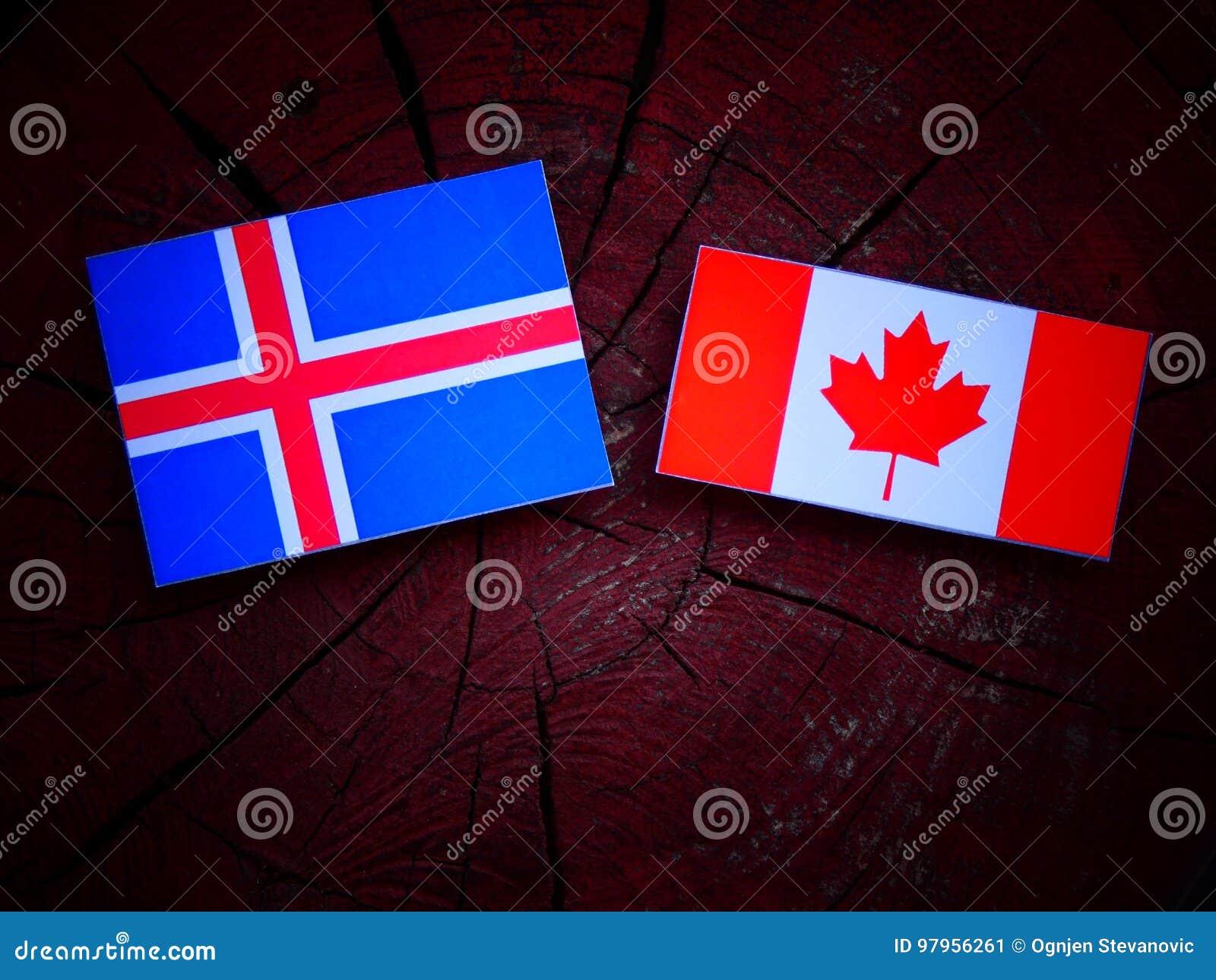 Islandzka flaga z kanadyjczyk flaga na drzewnym fiszorku odizolowywającym