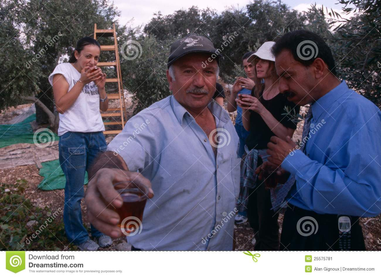 ISM volunteers and Palestinian workers in an olive grove, Palestine.