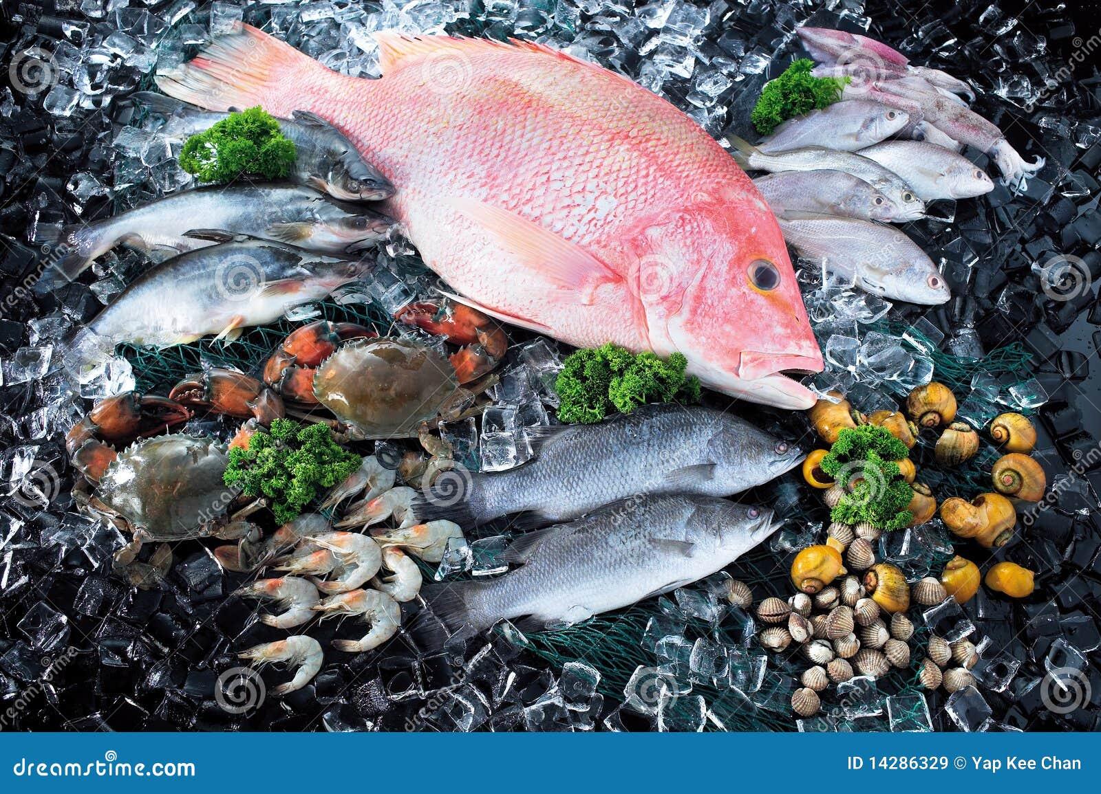 Ismarknad över skaldjur