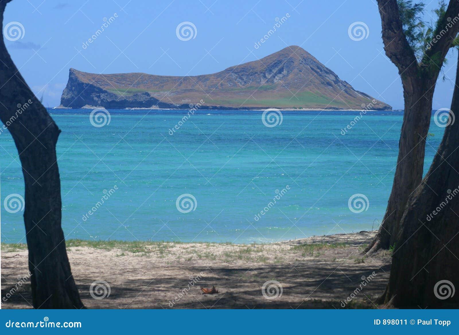 Isola in mare aperto