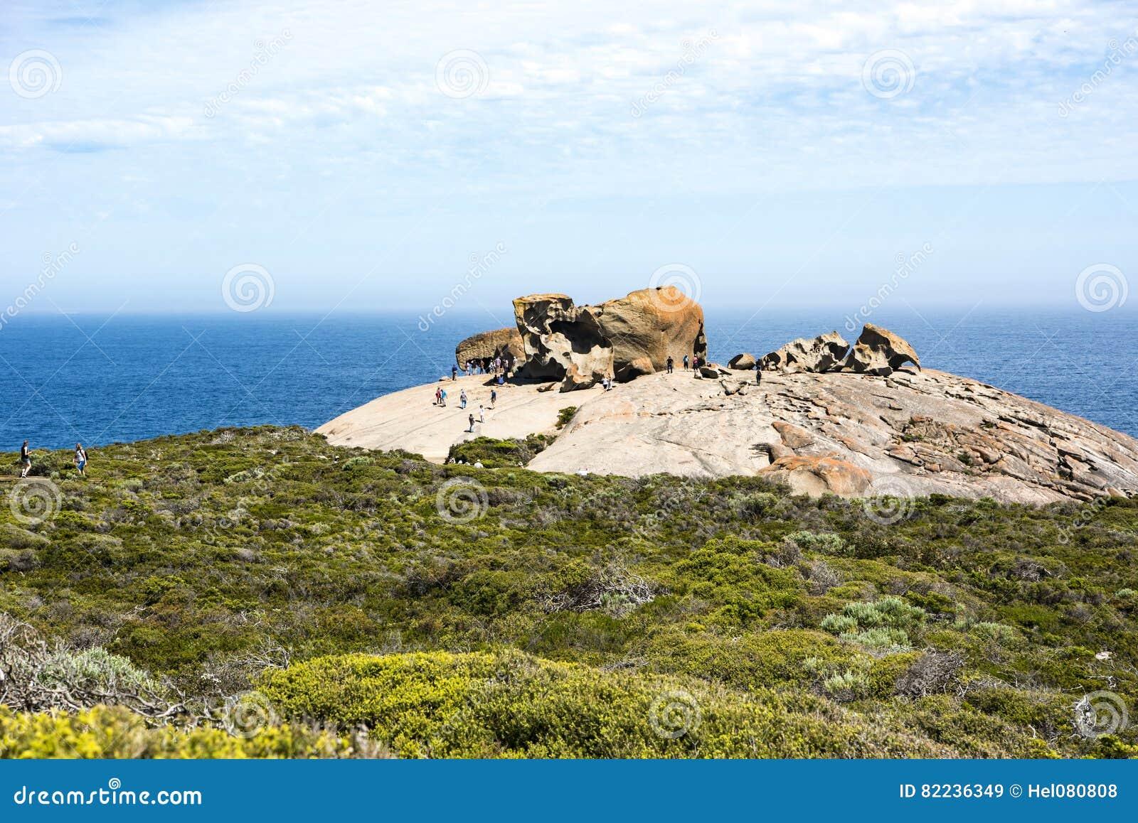 Isola notevole del canguro di rocce, Australia