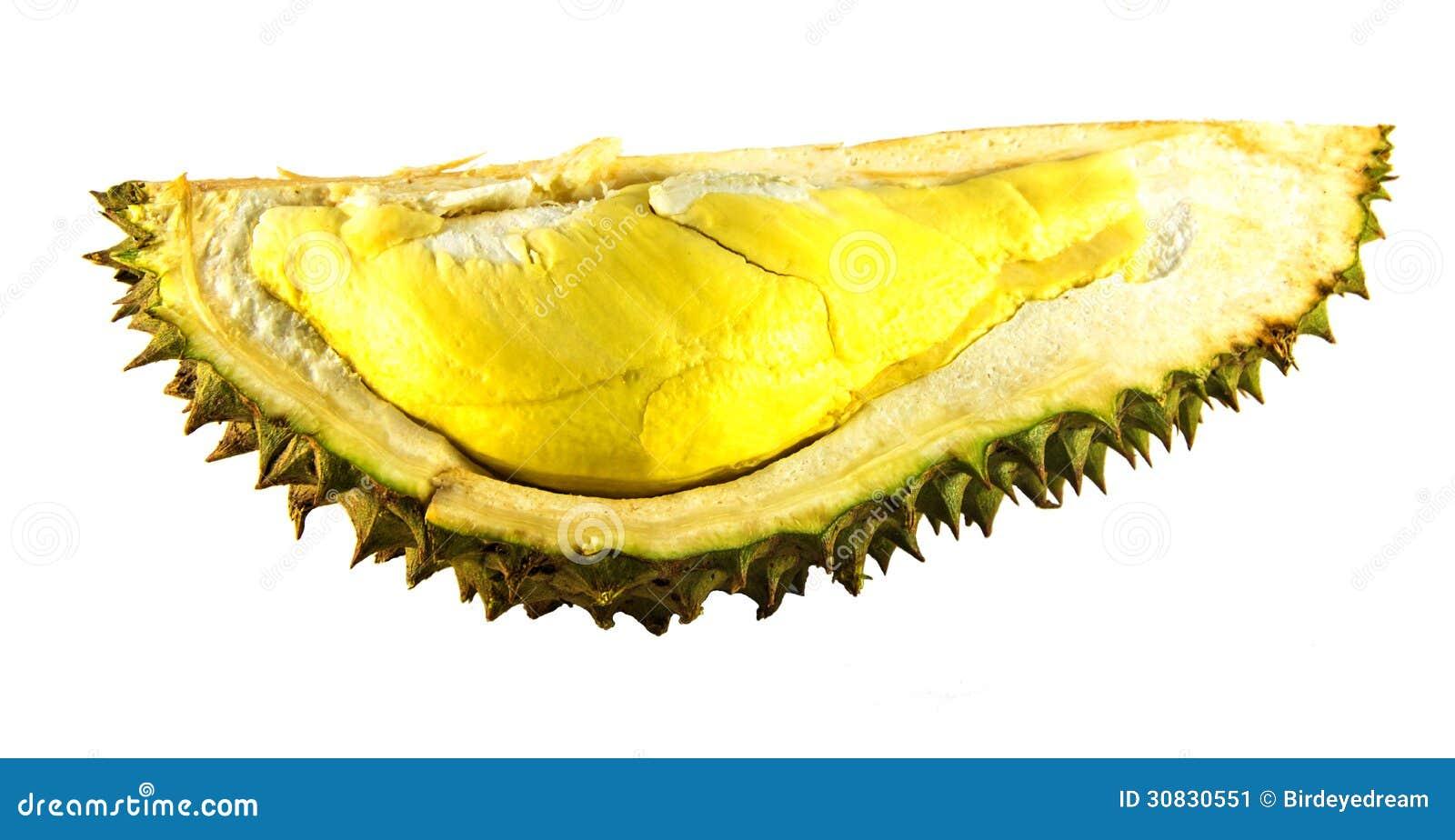 Isolamento del Durian