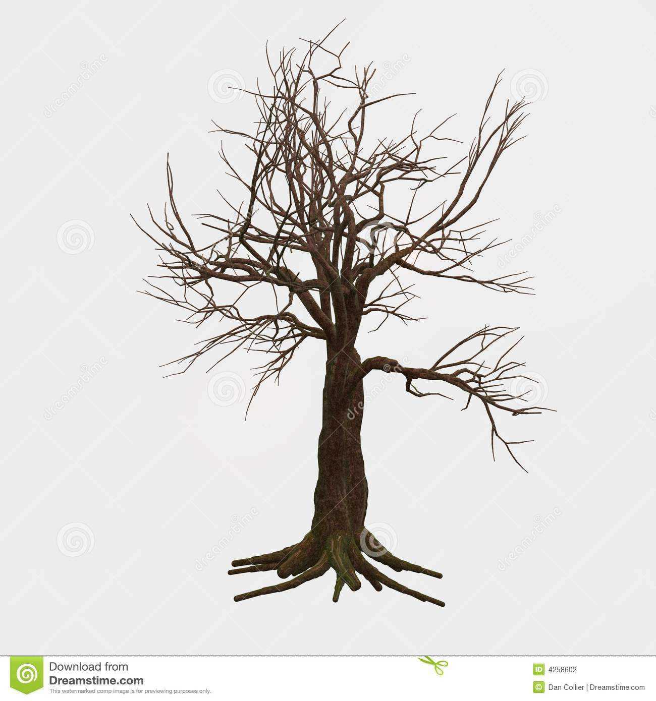 isolated bare tree stock photography image 4258602