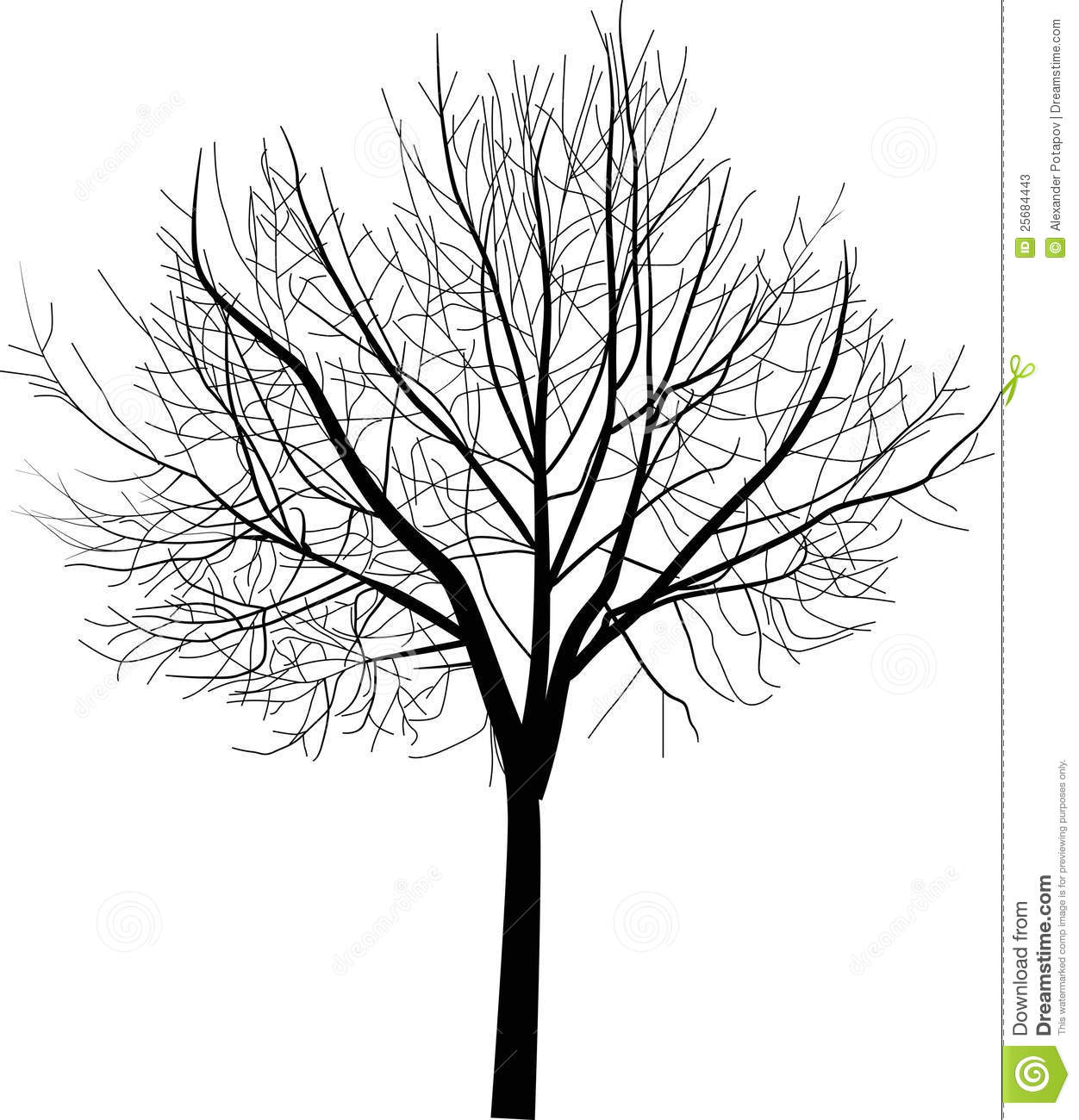 Isolated Bare Tree Illustration Stock Vector - Image: 25684443
