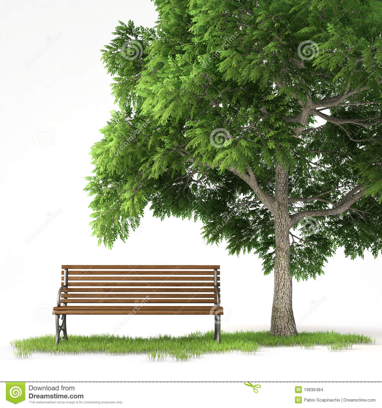 Isolated Bench Under Tree Stock Images Image 19836484