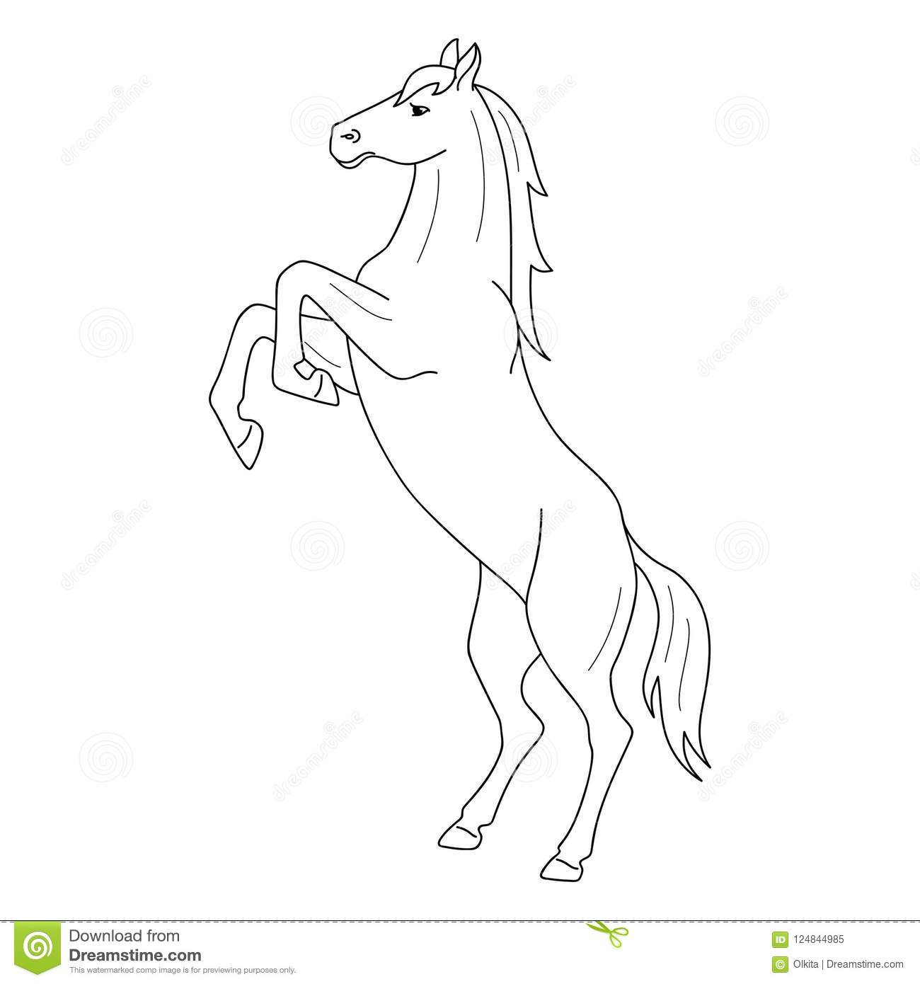 Isolated Black Outline Rearing Horse On White Background. Side View ...