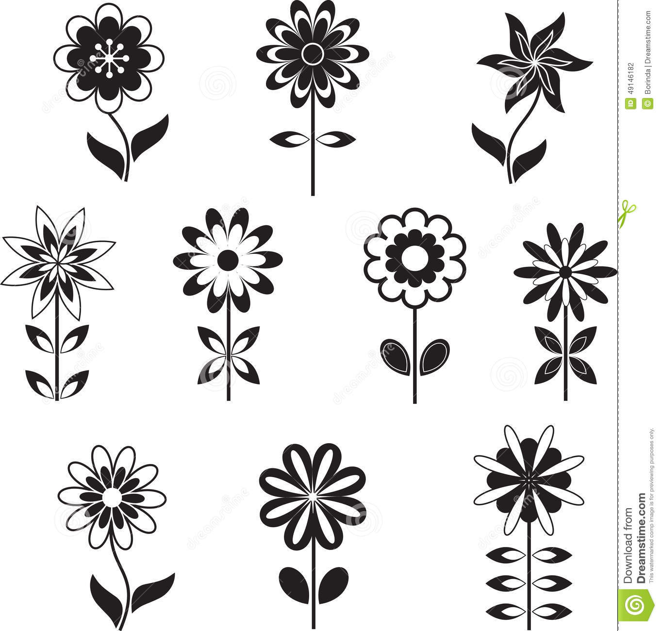 Isolated Black And White Flower Illustrations Stock Photo Image Of