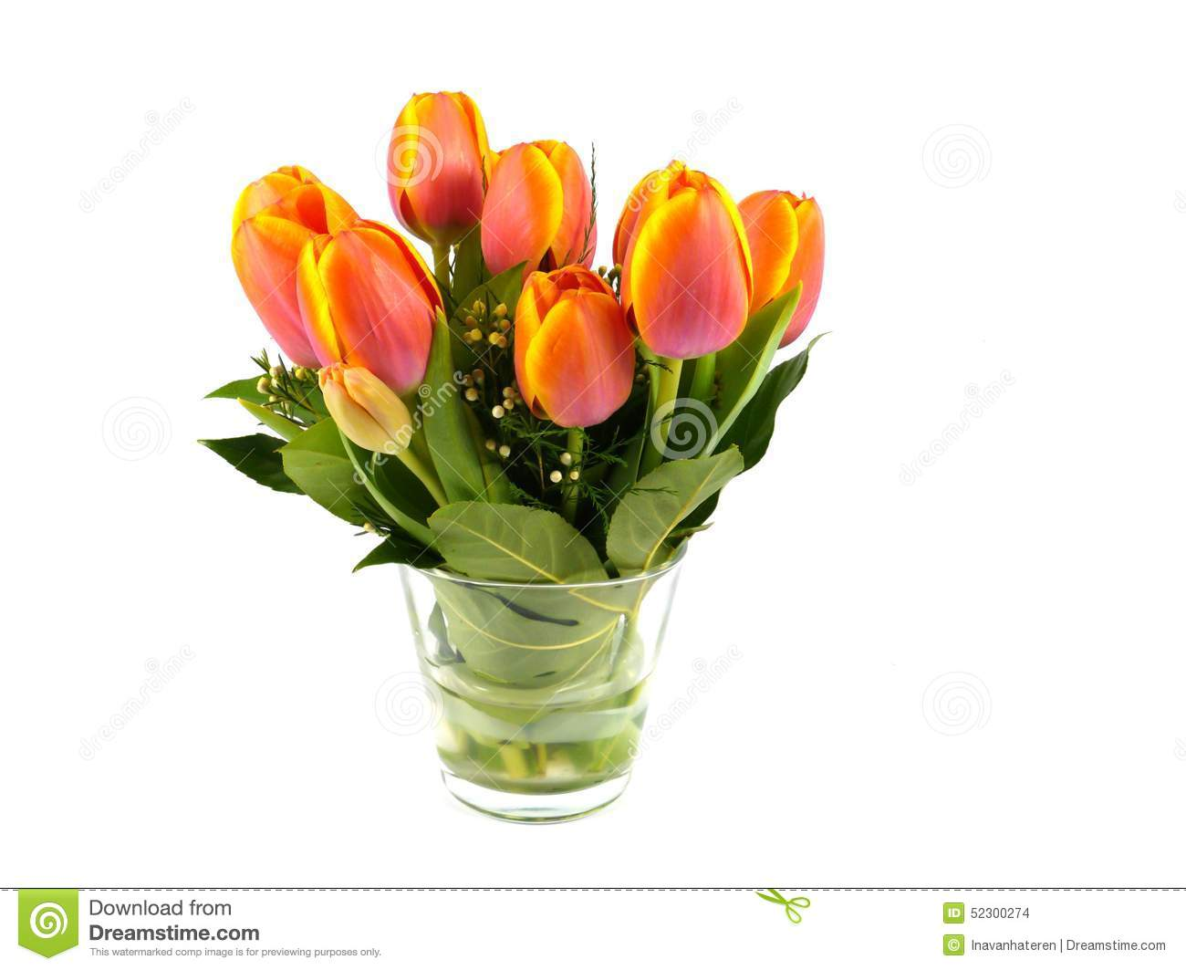 An isolated bouquet of colorful tulips on a vase of glass stock royalty free stock photo floridaeventfo Gallery