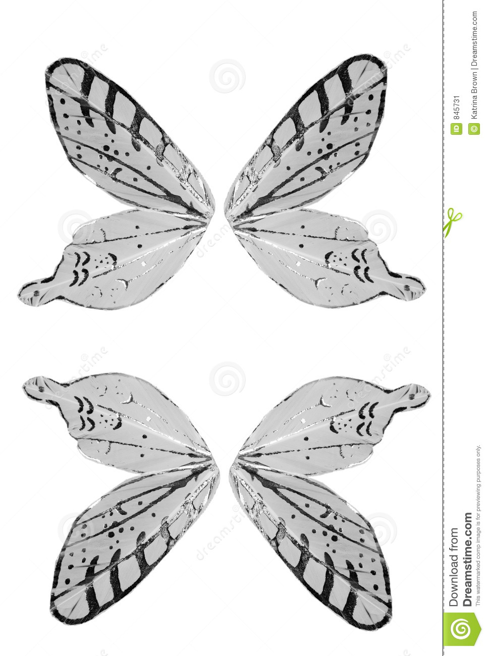 Isolated Butterfly Angel Wings