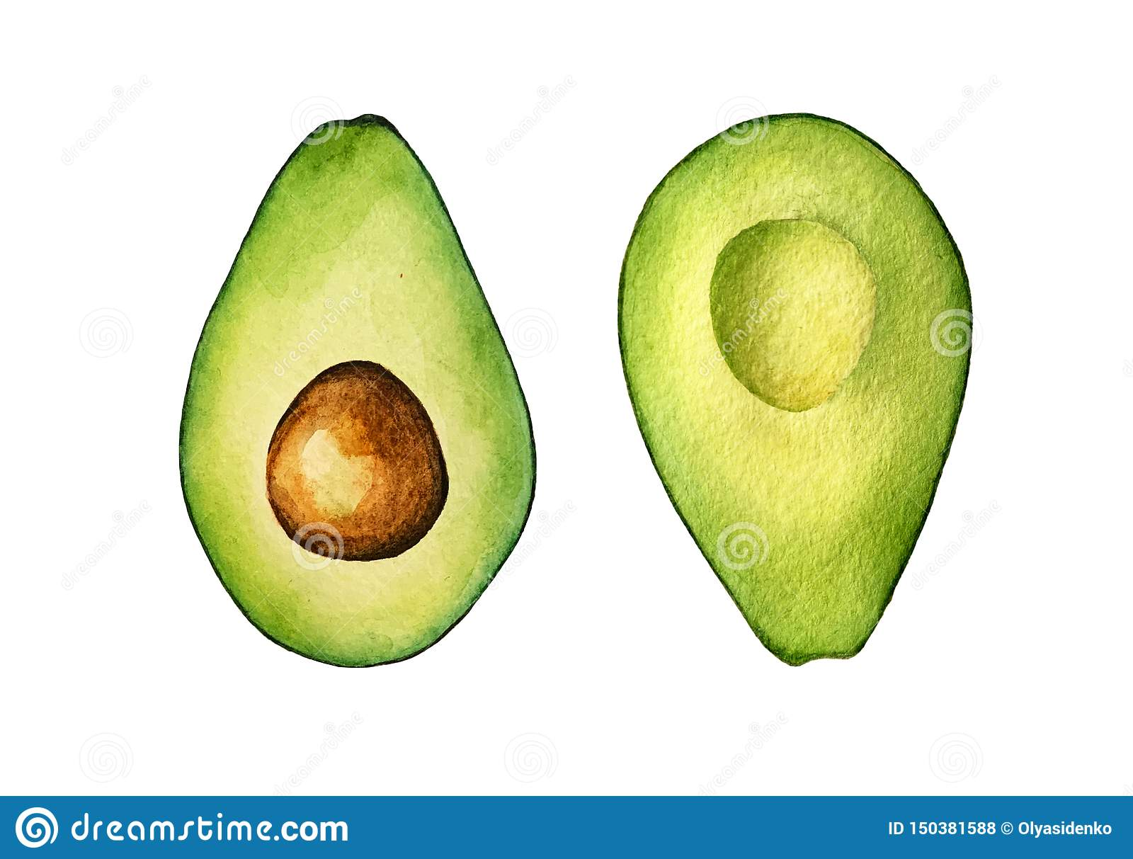 Isolated colorful watercolor avocado halves on white background