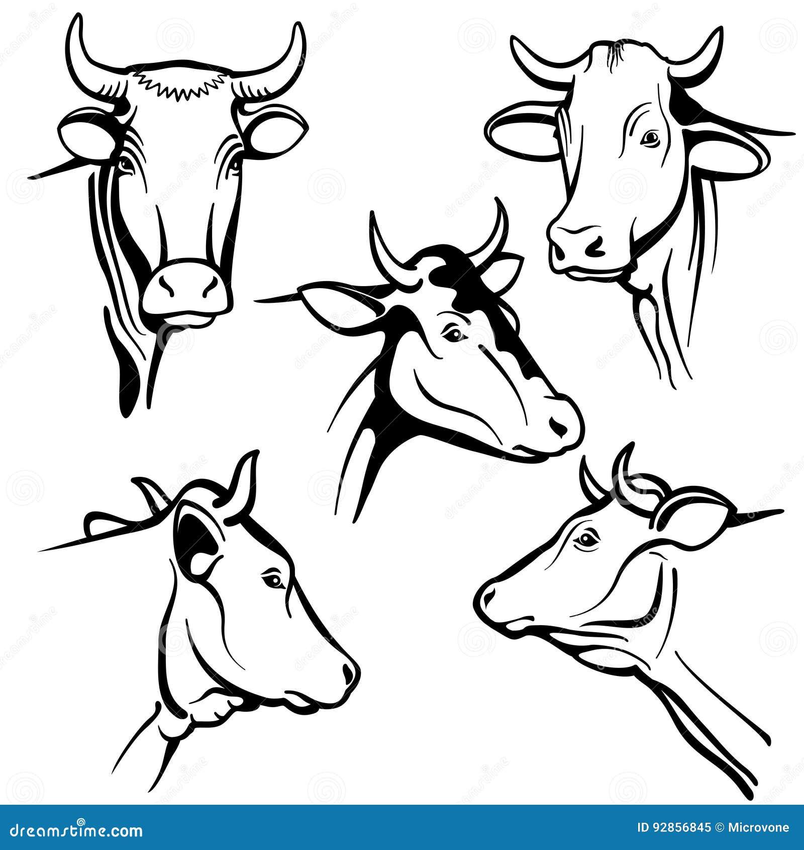 Calf Cartoons, Illustrations & Vector Stock Images - 4634 ...