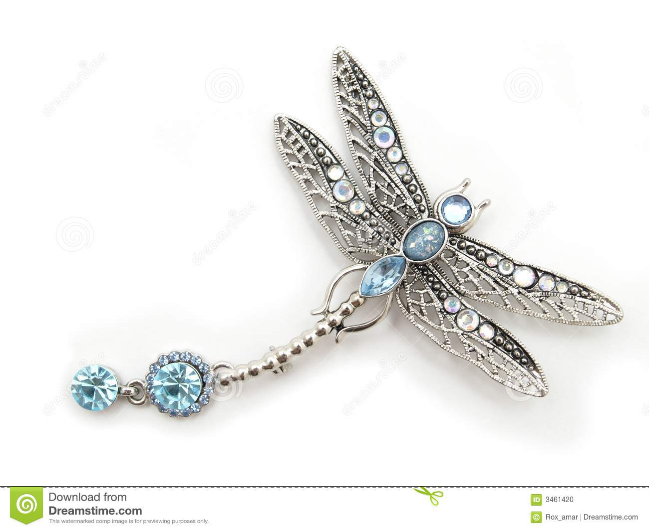 Isolated dragonfly
