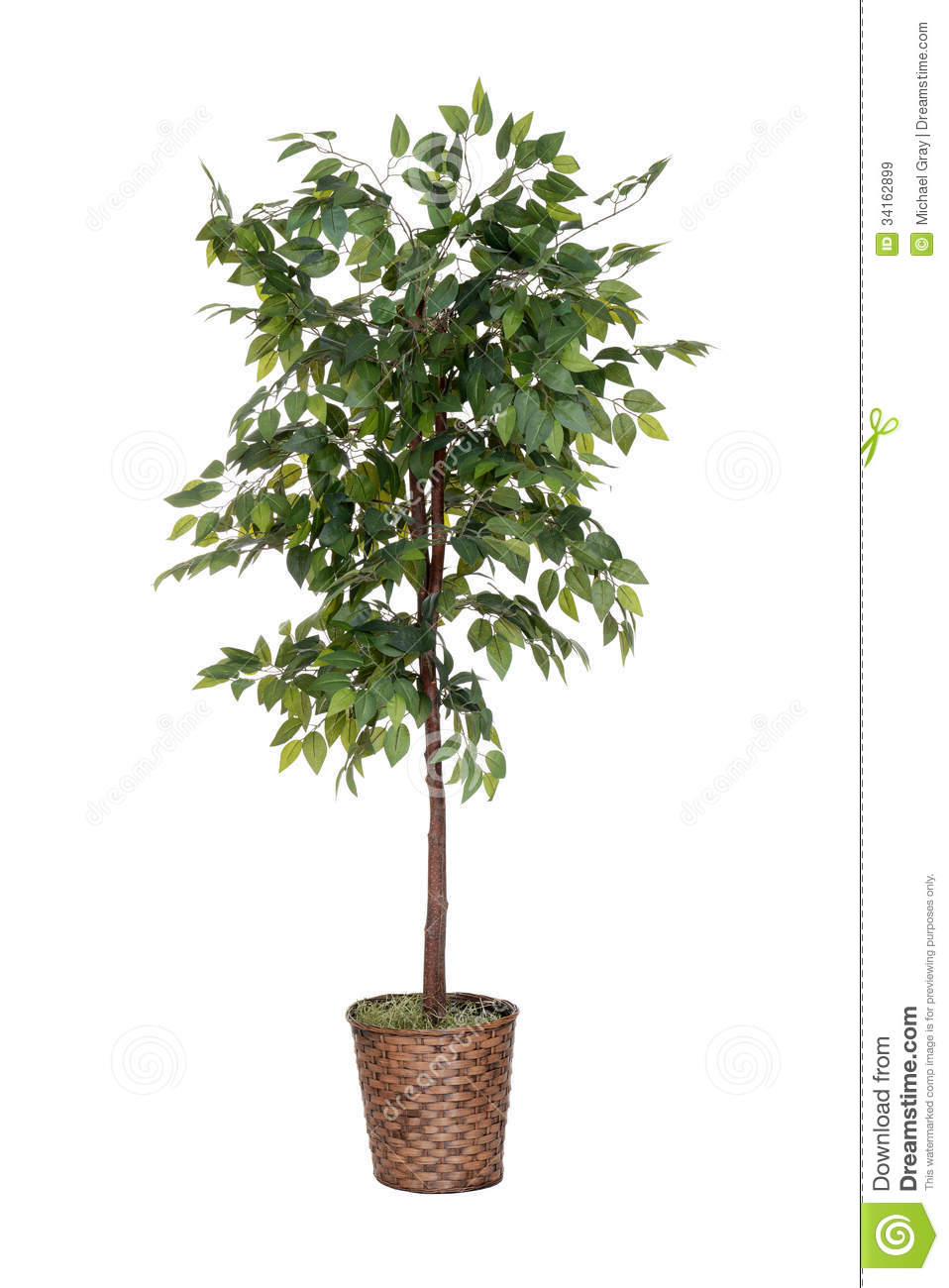 Isolated Fake Tree Royalty Free Stock Images - Image: 34162899